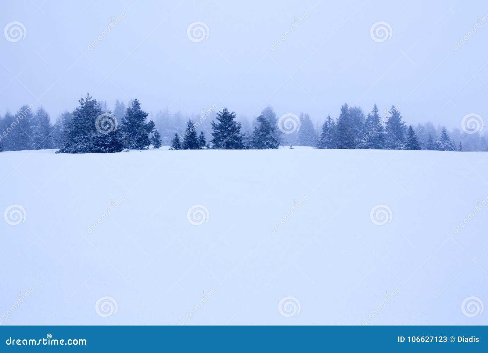 Nevado y fondo de niebla del paisaje del invierno de la montaña