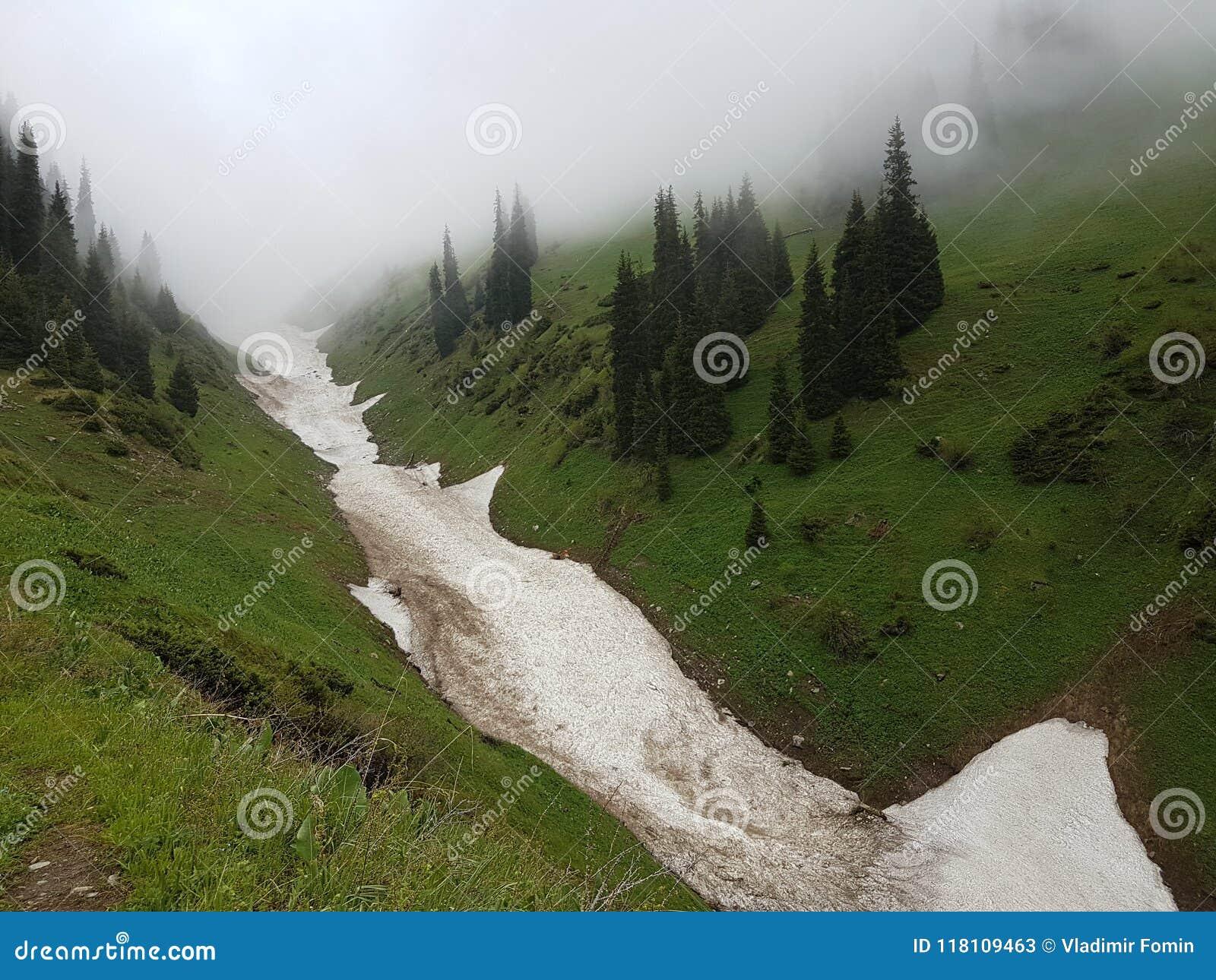 Neve das avalanchas no desfiladeiro