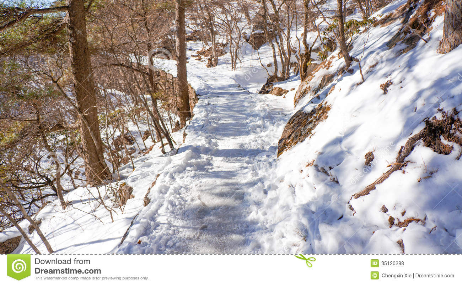 Neve de Huangshan da montagem no inverno