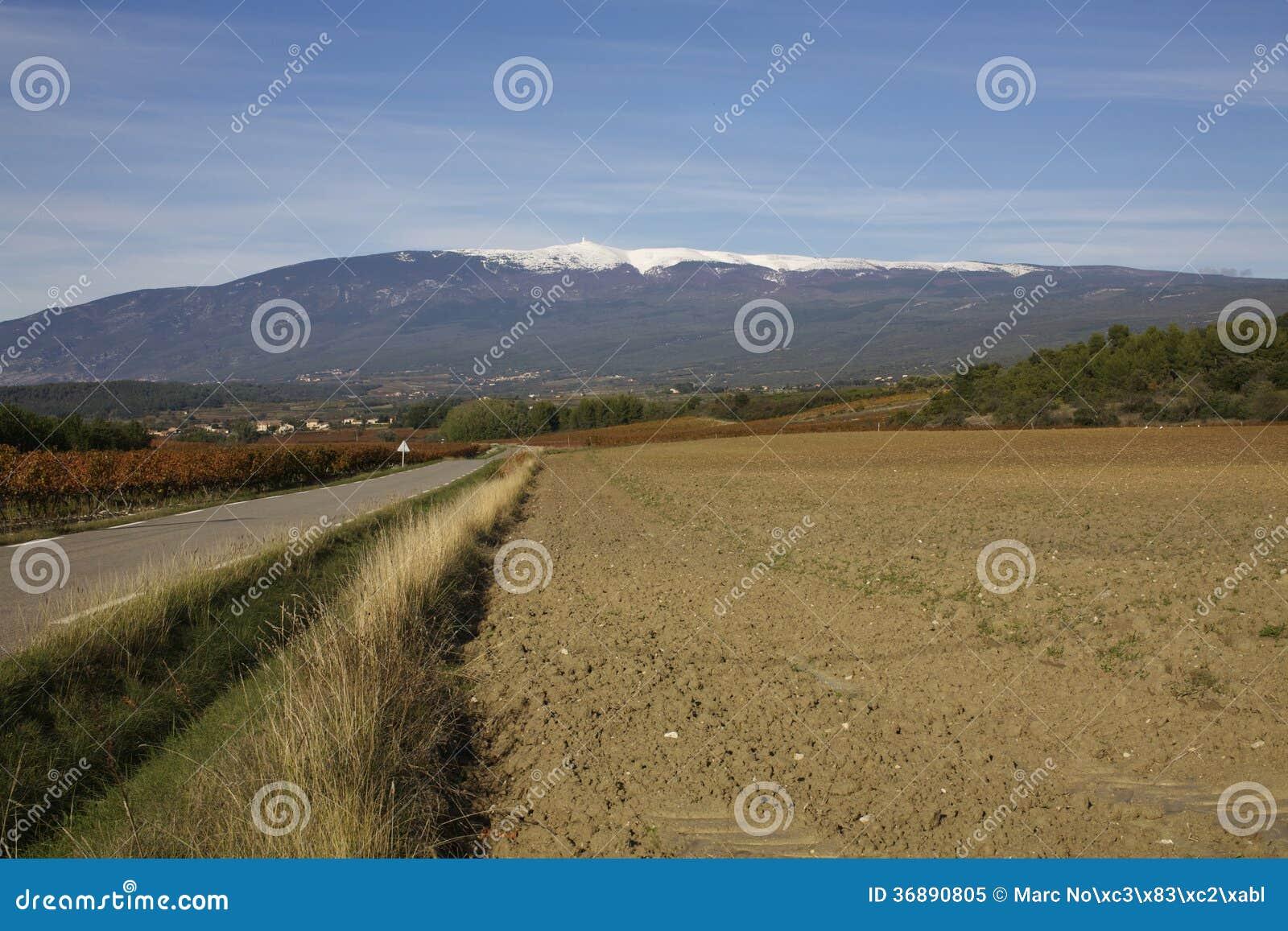 Download Neve del ventoux di Mont immagine stock. Immagine di mont - 36890805