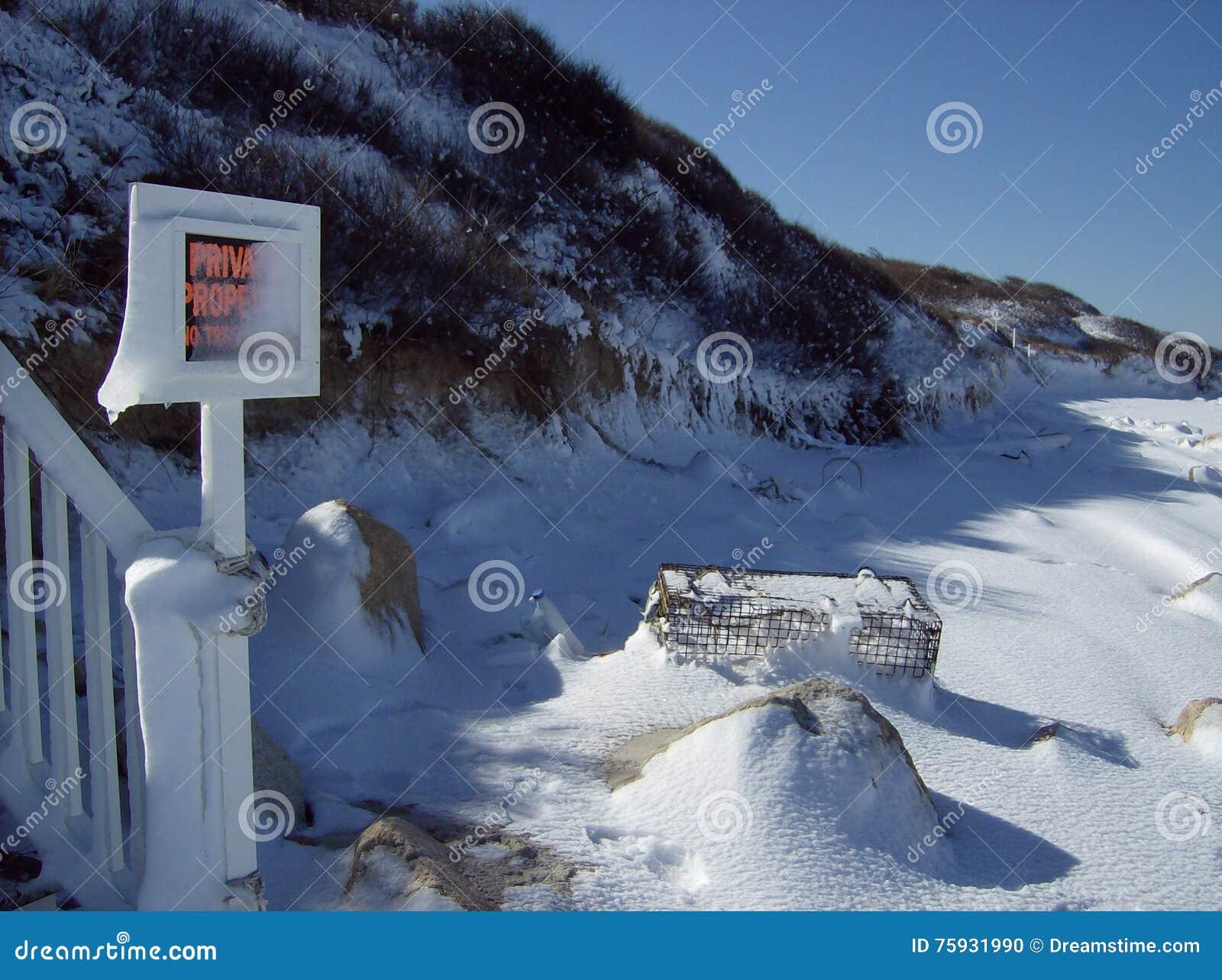 Neve do inverno em Brewster Ma costa, baía de Cape Cod