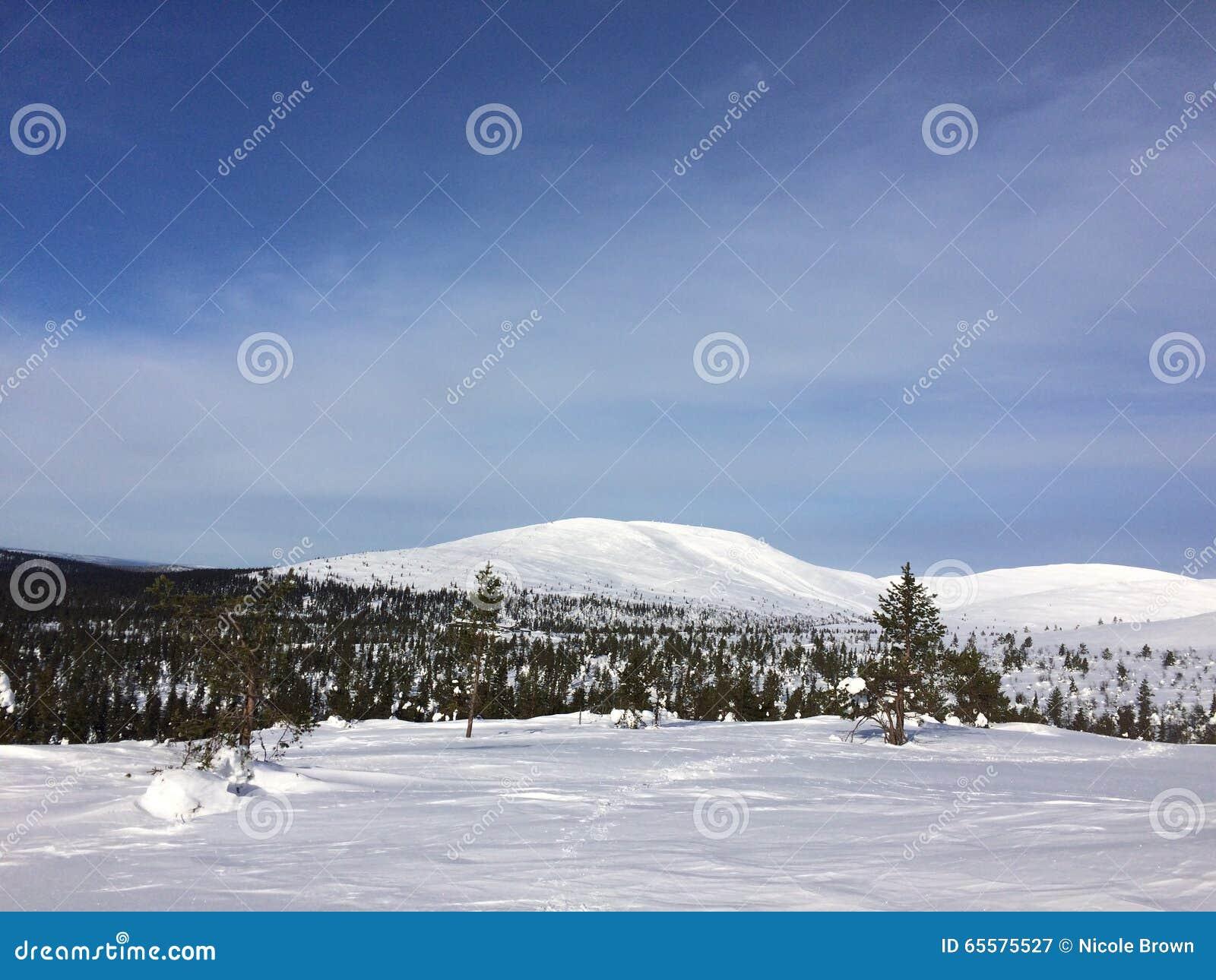 Neve do país