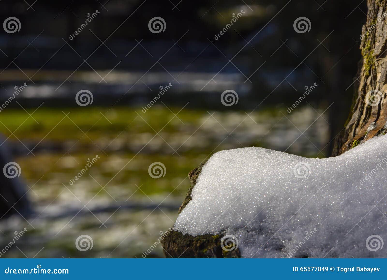 Neve no fim da árvore acima