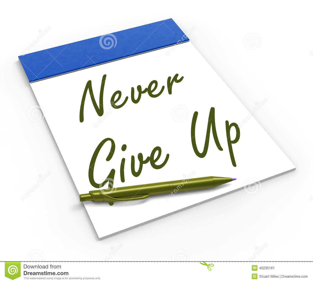 I will never give up meaning in urdu