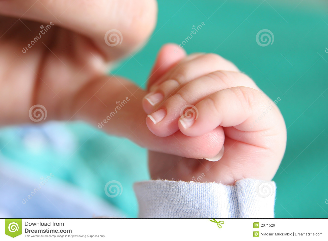 new born baby's hand stock image. image of holds, birth - 2071529