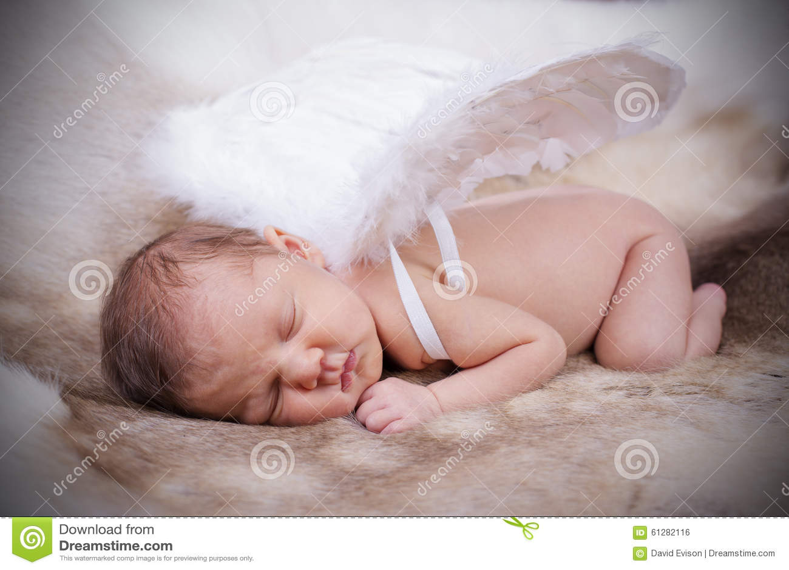 New Born Baby.