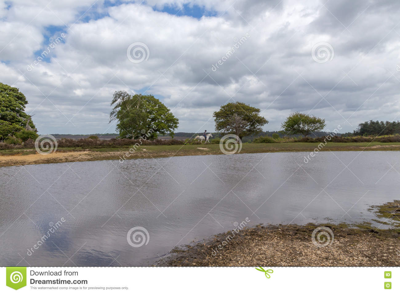 New Forest landscape with lake, trees and horse with rider