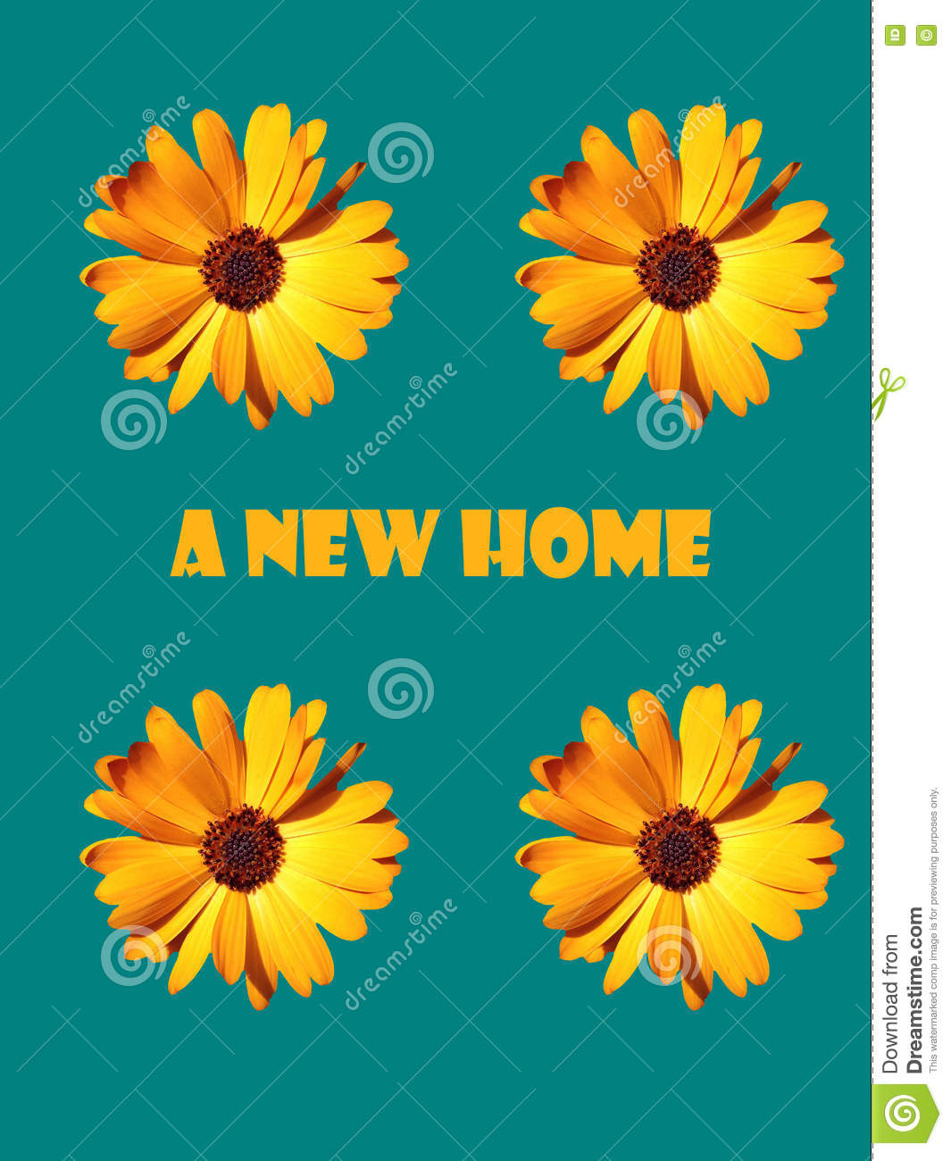 A New Home Stock Illustration Illustration Of Greeting 77200189