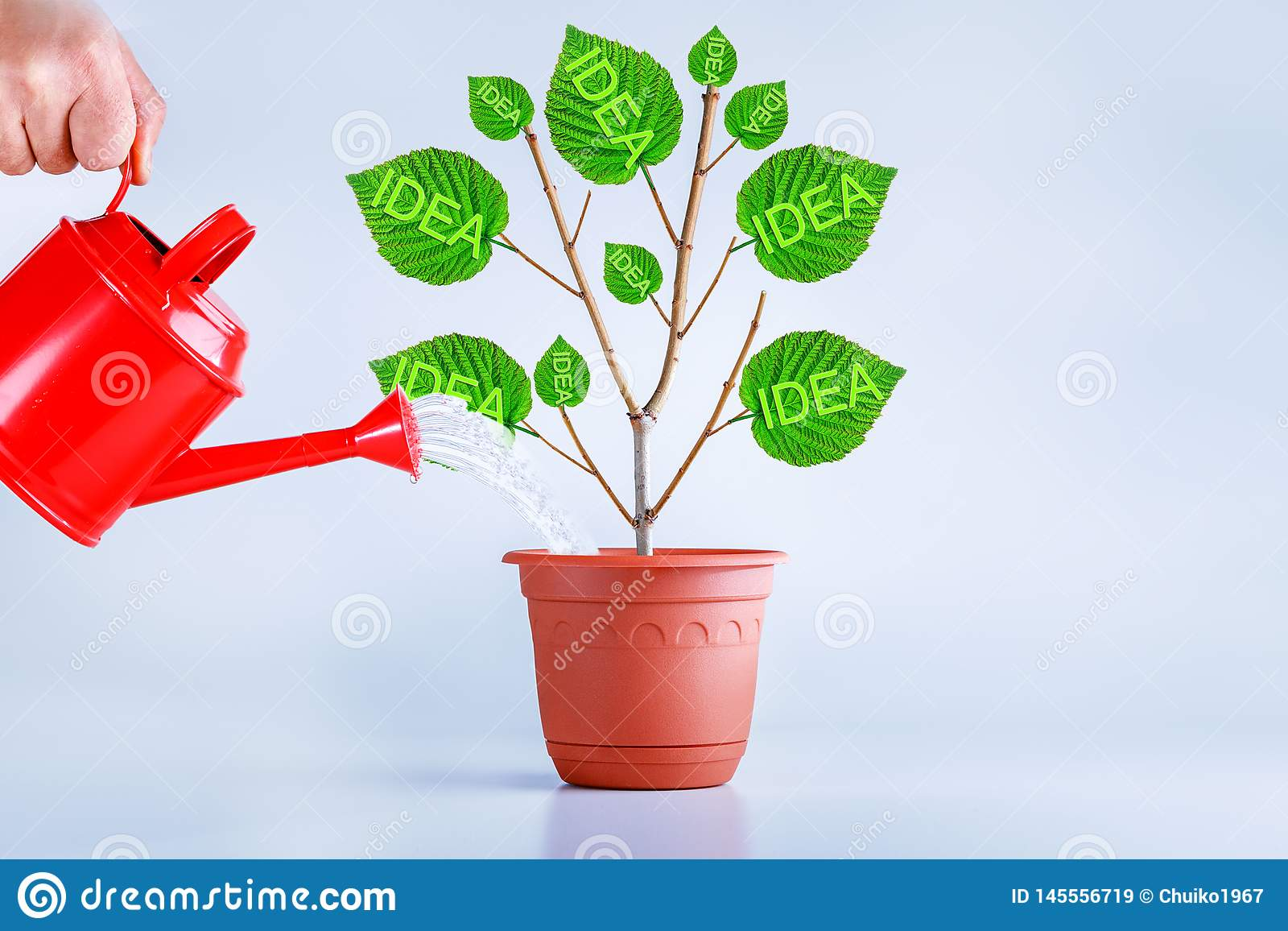 New idea creative concept. Birth, growing idea plant. Businessman growing ideas
