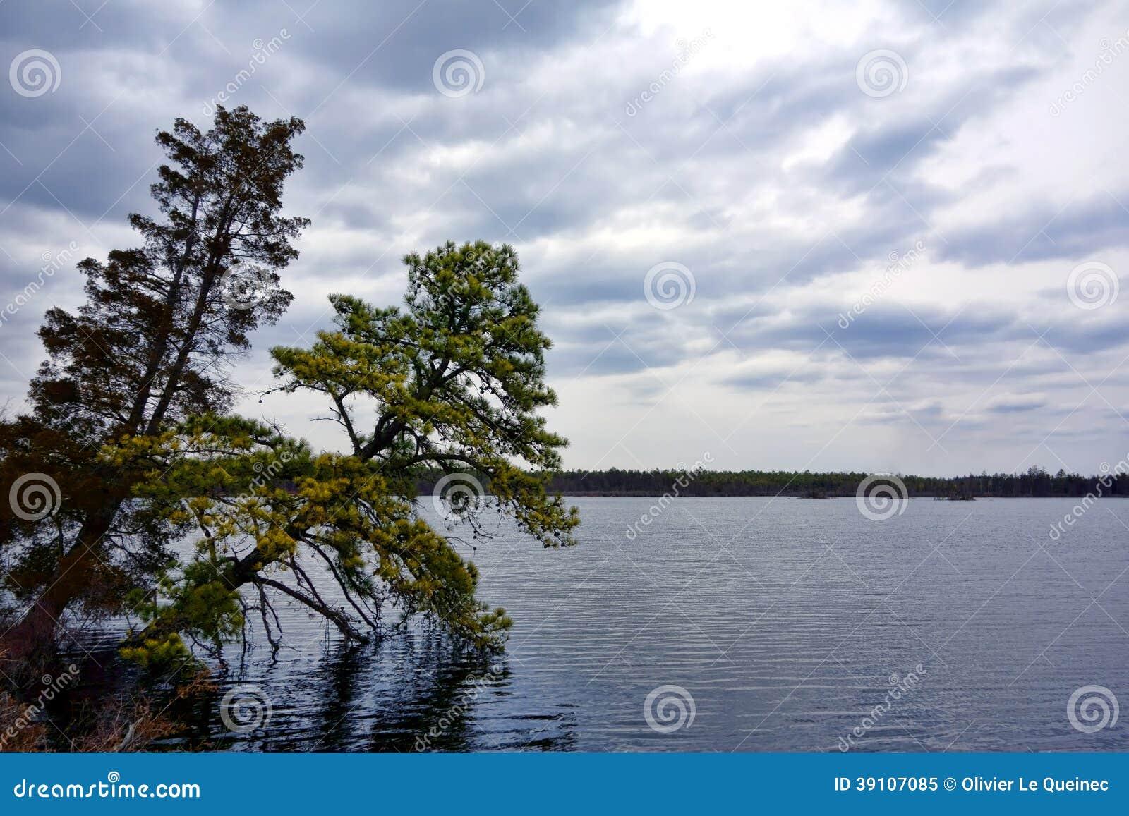 New Jersey Pine Barrens Pinelands National Reserve