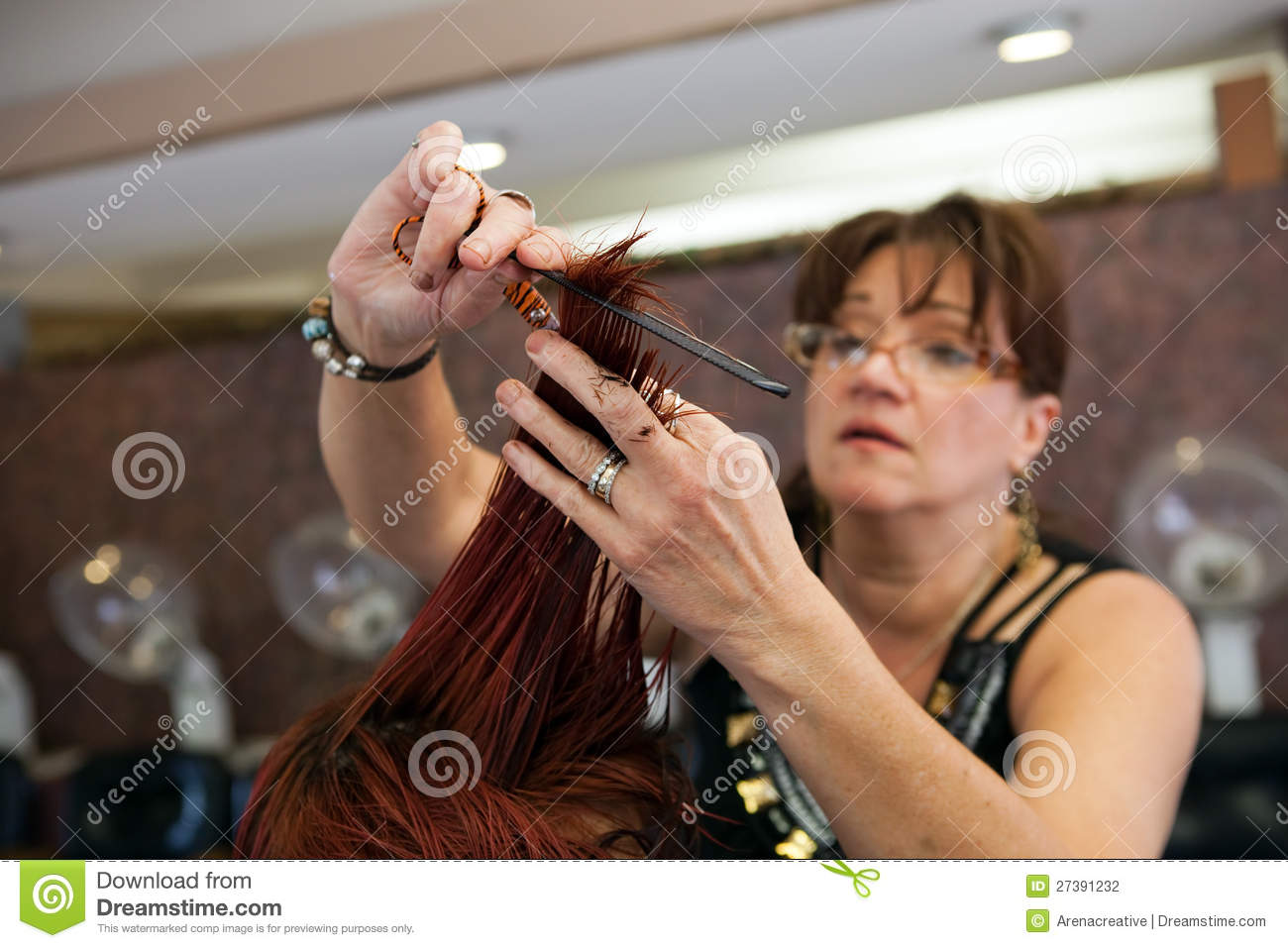a new look at the salon stock photography image 27391232