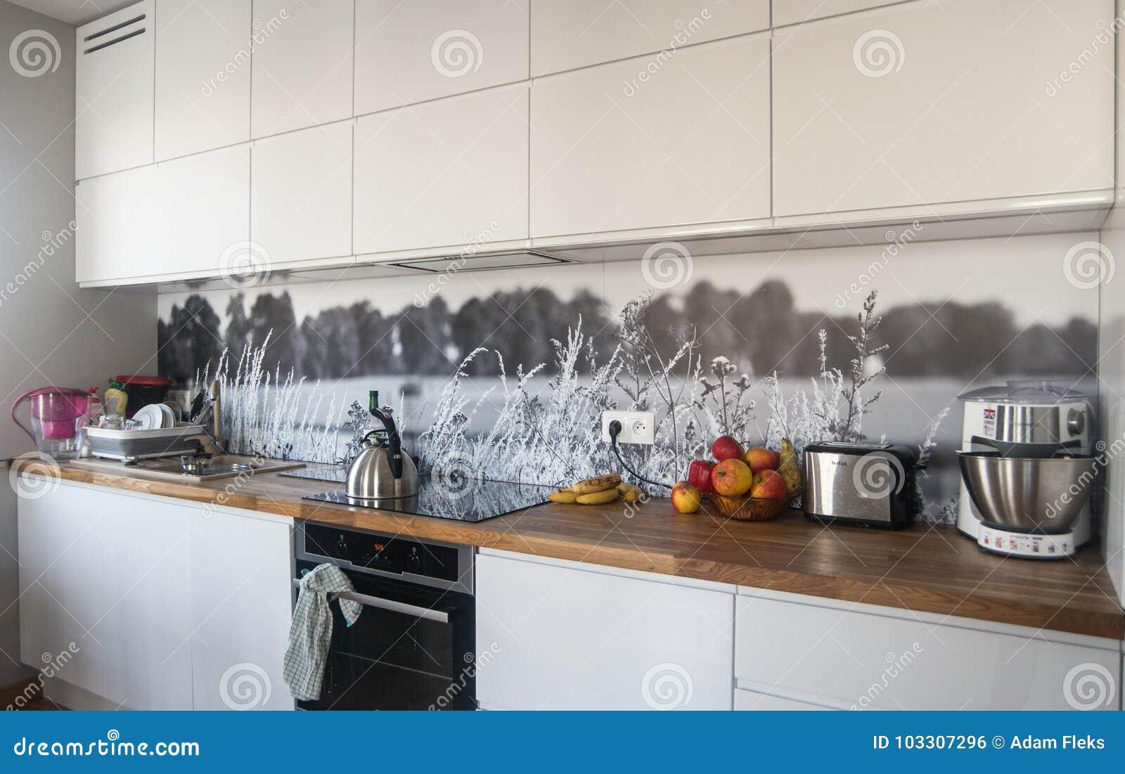 New Modern Kitchen Editorial Photo Image Of Isolation 103307296