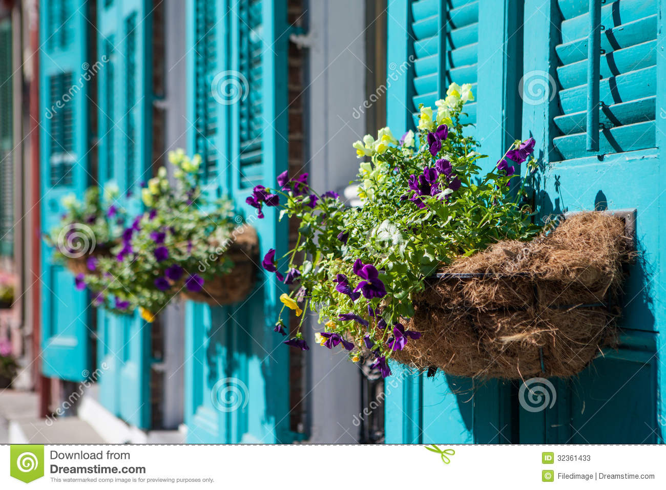 Flower Baskets Usa : New orleans flowers stock photos image