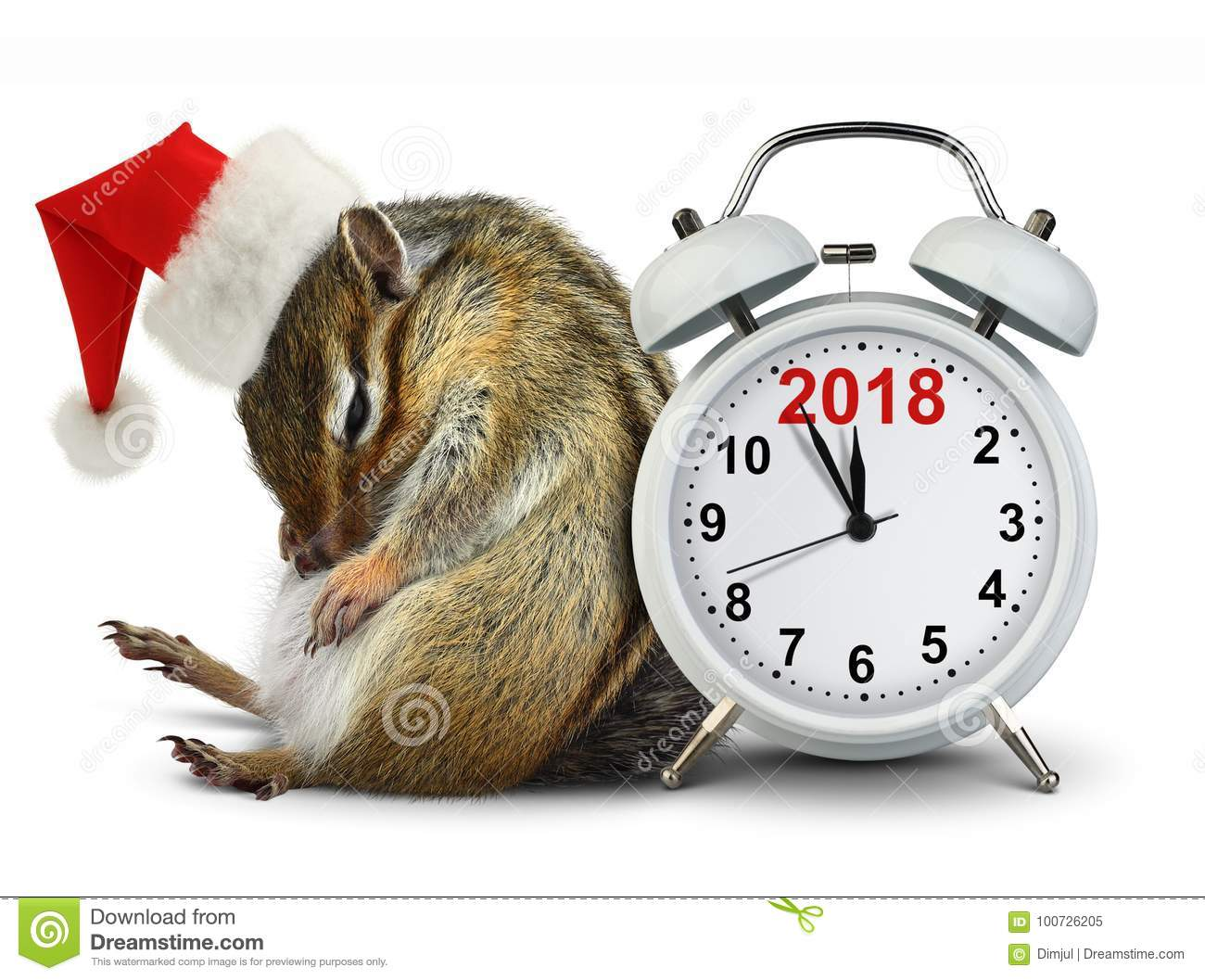 2018 New year concept, funny Chipmunk in red Santa hat with clock
