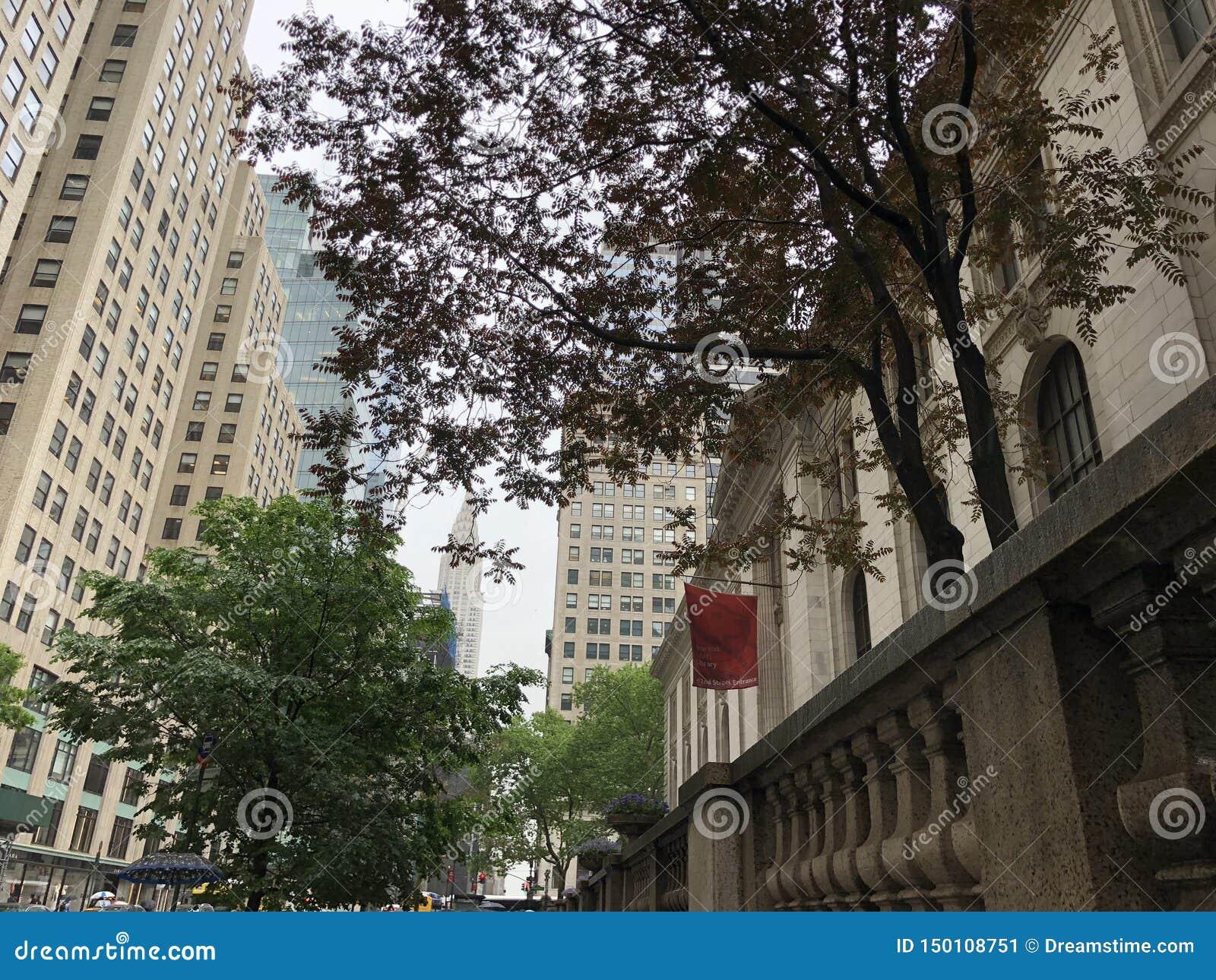 New- Yorköffentliche bibliothek mit Chrysler-Gebäude