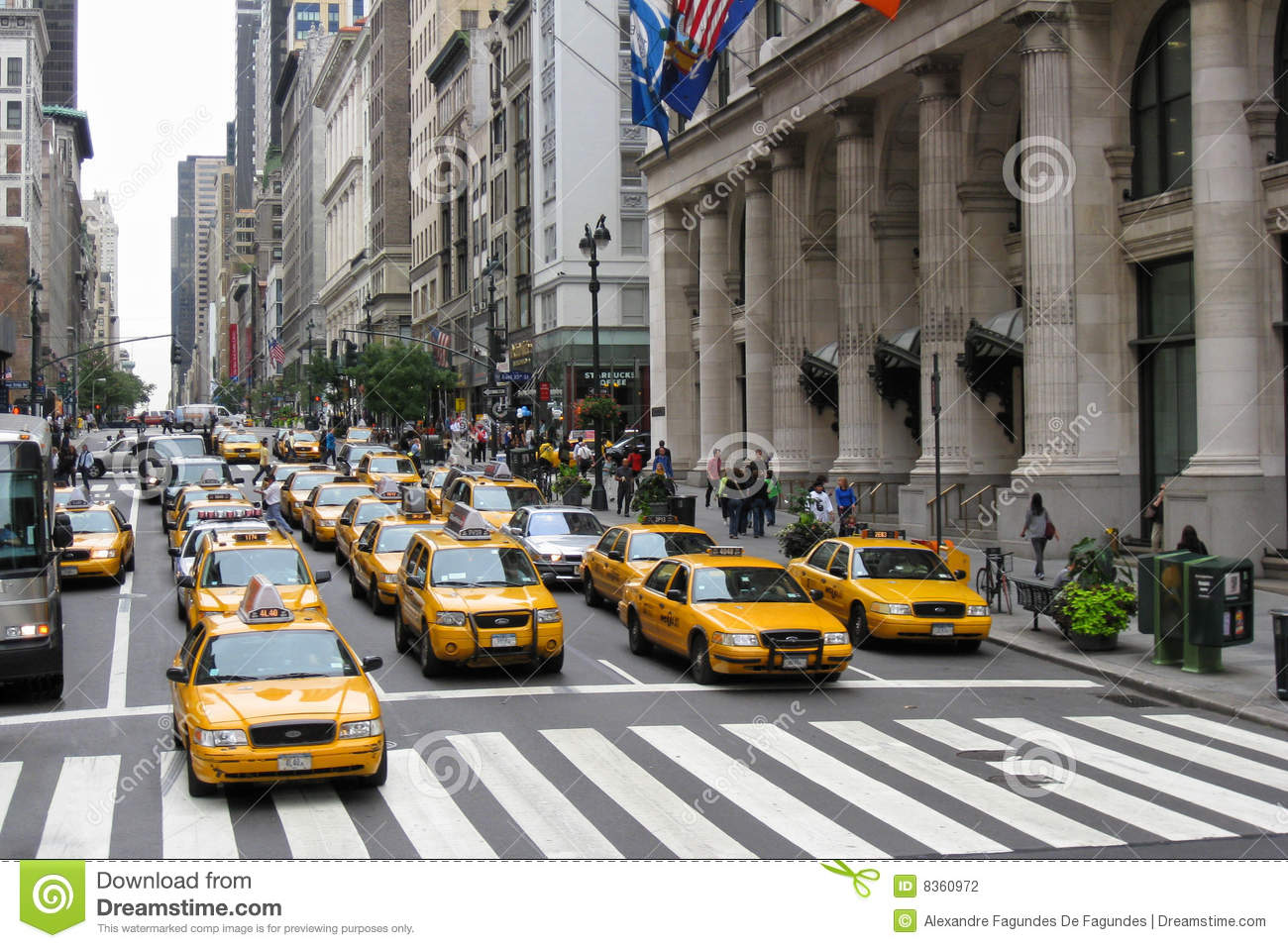 large group of yellow cabs stopped at a sign in the 5th avenue  New