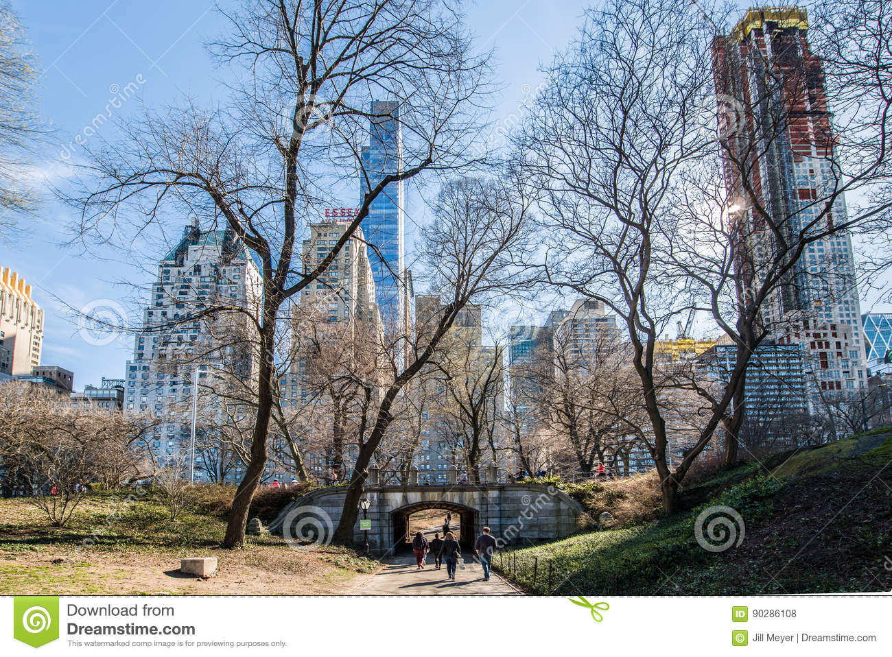 New York City, Central Park Editorial Stock Photo - Image of