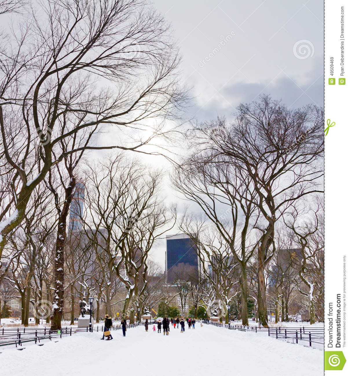 Central Park People: Central Park In Winter Editorial Stock