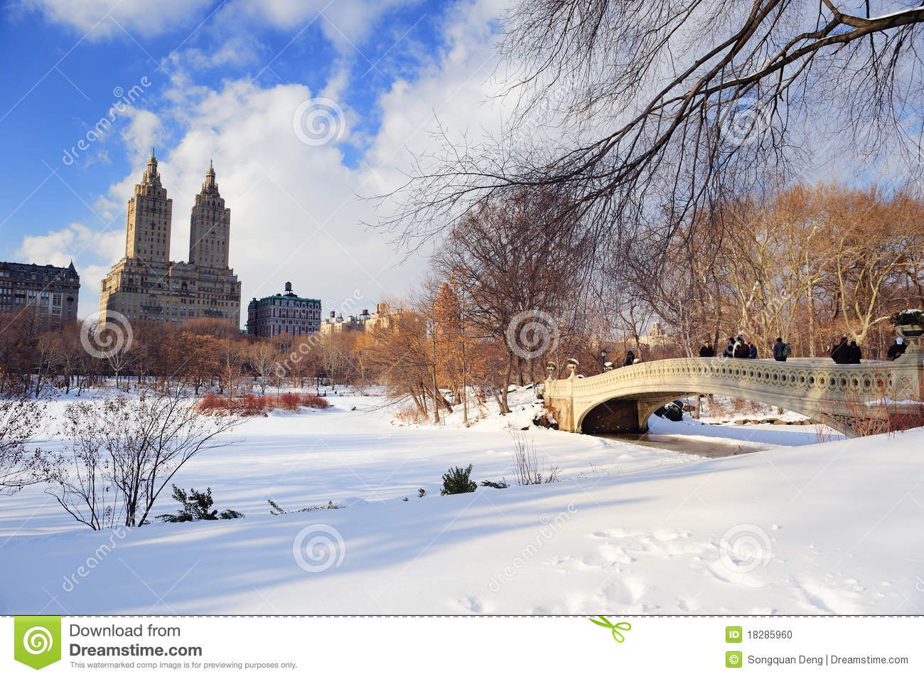 New york city manhattan central park in inverno fotografia for Appartamenti vacanze new york city manhattan