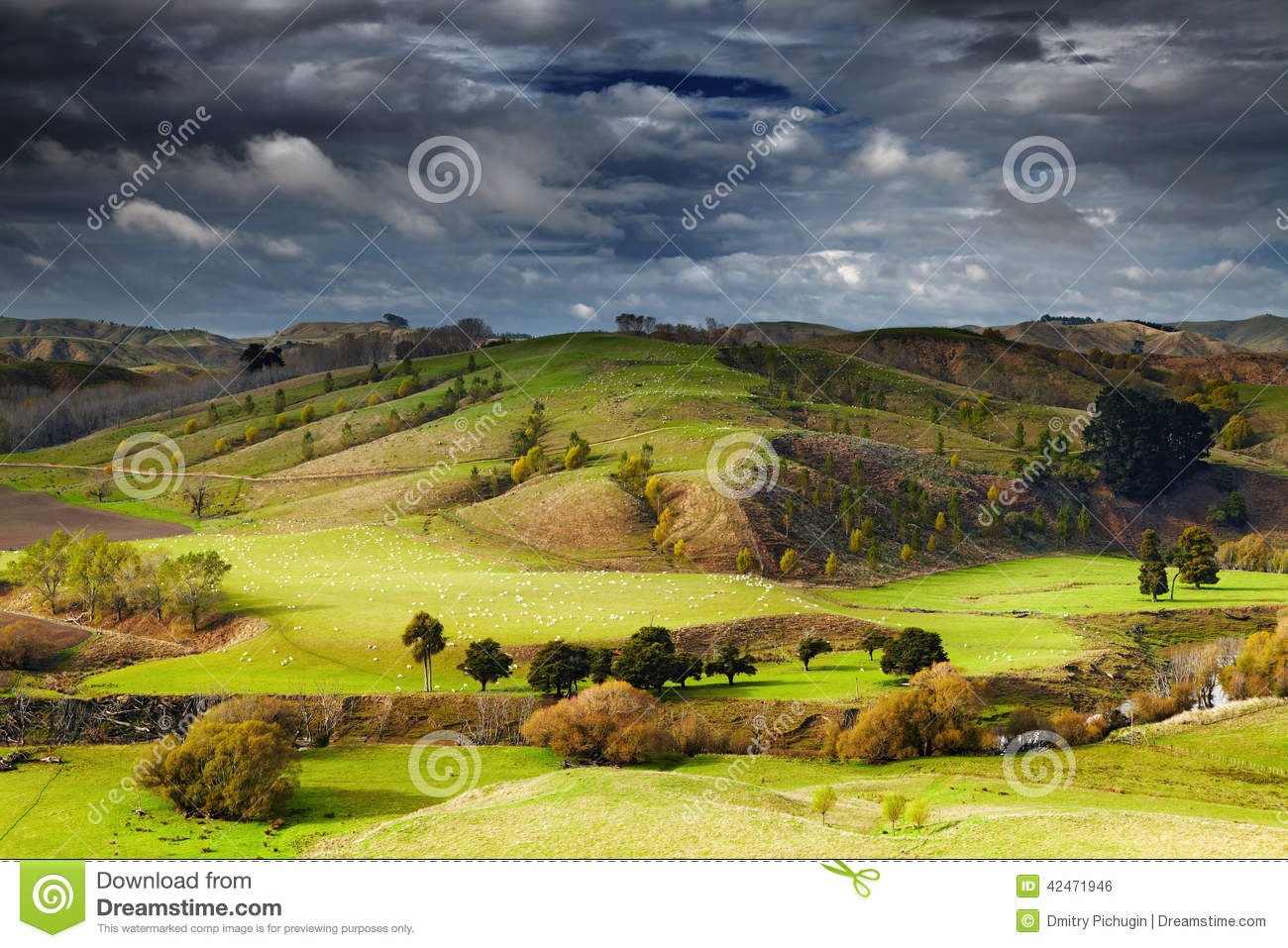 Landscape with farmland and cloudy sky, North Island, New Zealand.