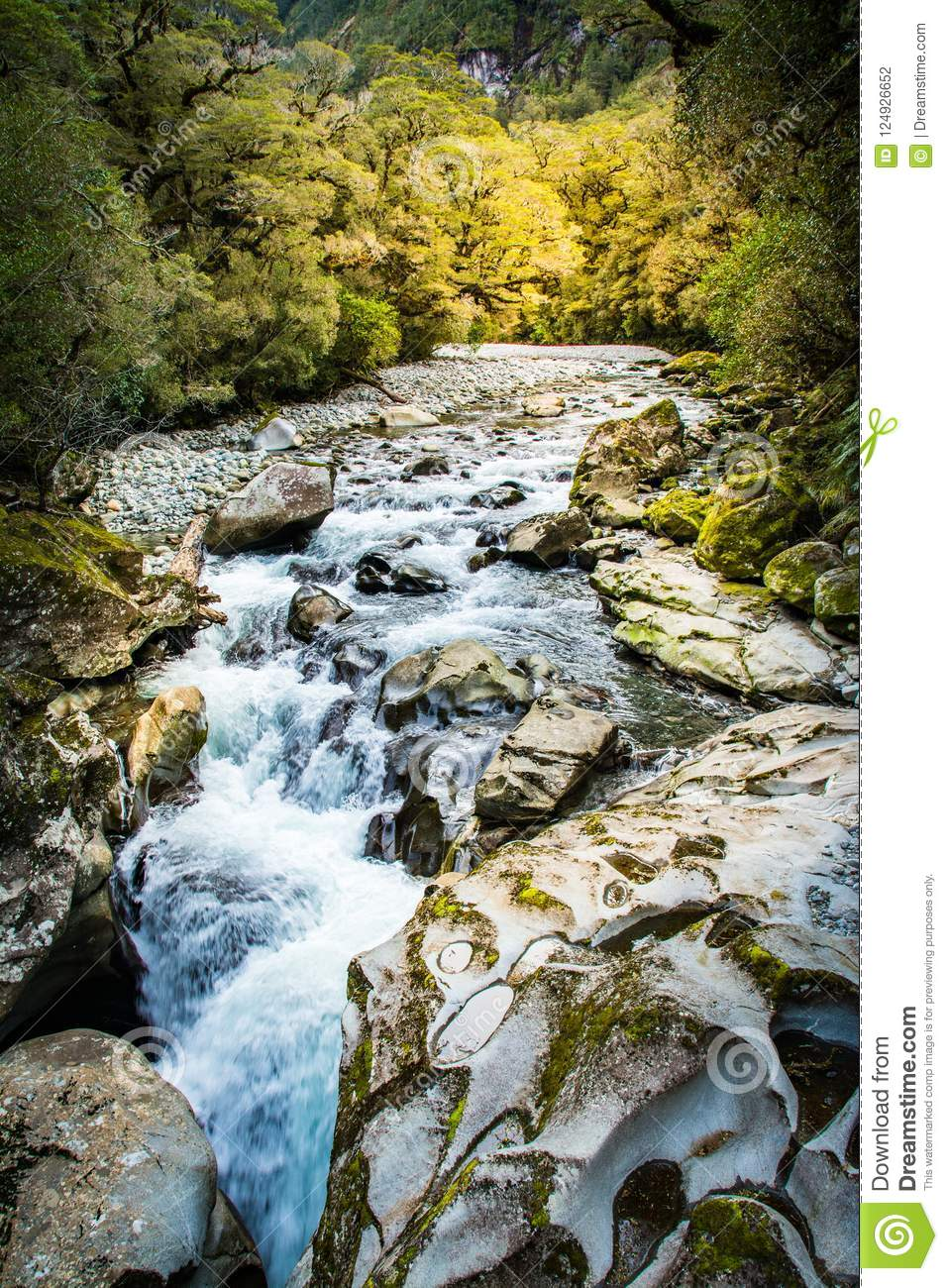 New Zealand Waterfall Near Milford Sound Stock Photo Image Of
