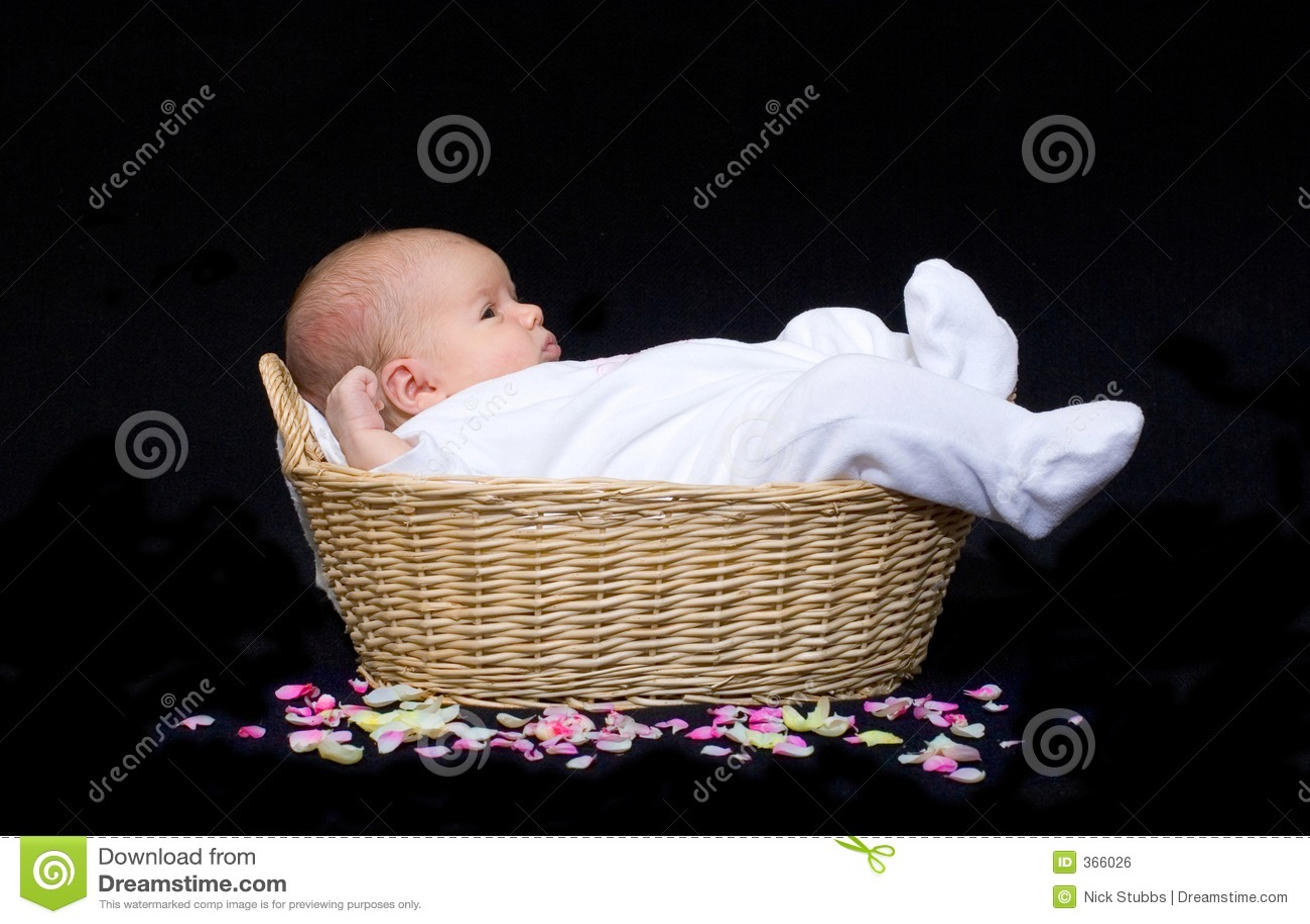 Newborn baby in a basket with flower petals