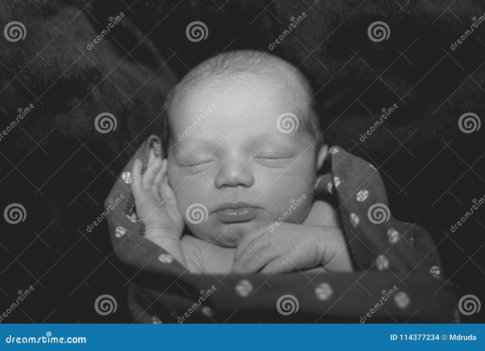 Newborn Baby Boy Stock Photo Image Of Hand Peaceful 114377234