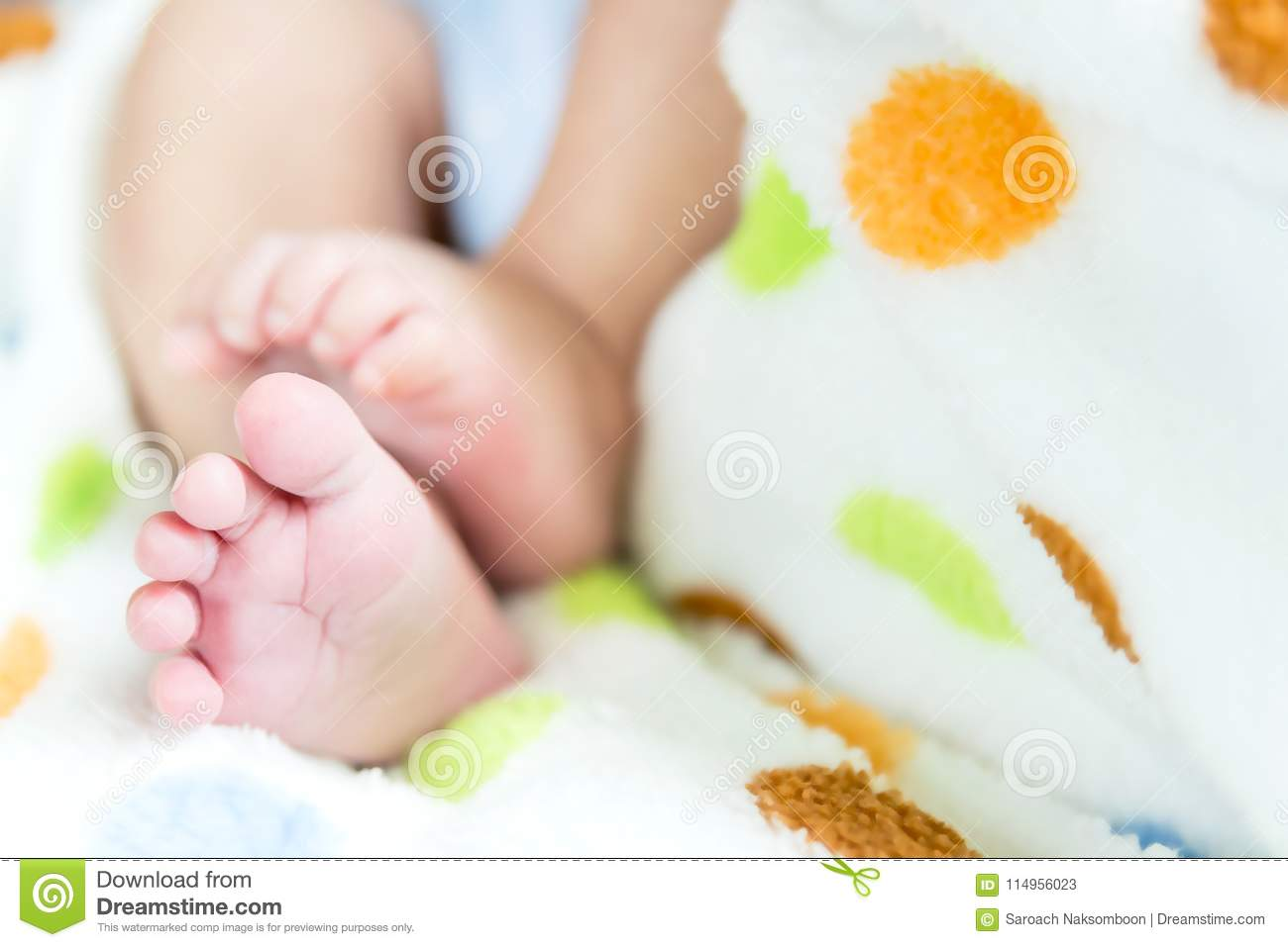 Newborn Baby Feet On Mom And Dad Hands Stock Image Image