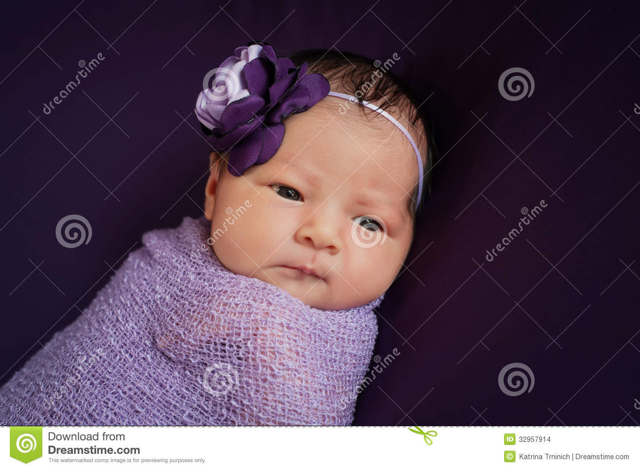 newborn baby girl in lavender and purple stock photo image of