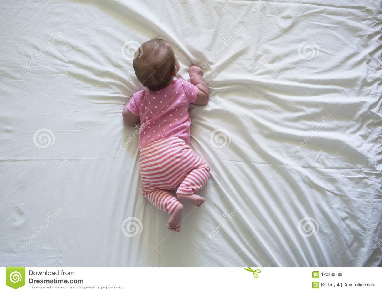 65b991355 Newborn Baby Girl Lying On Her Stomach Stock Image - Image of infant ...