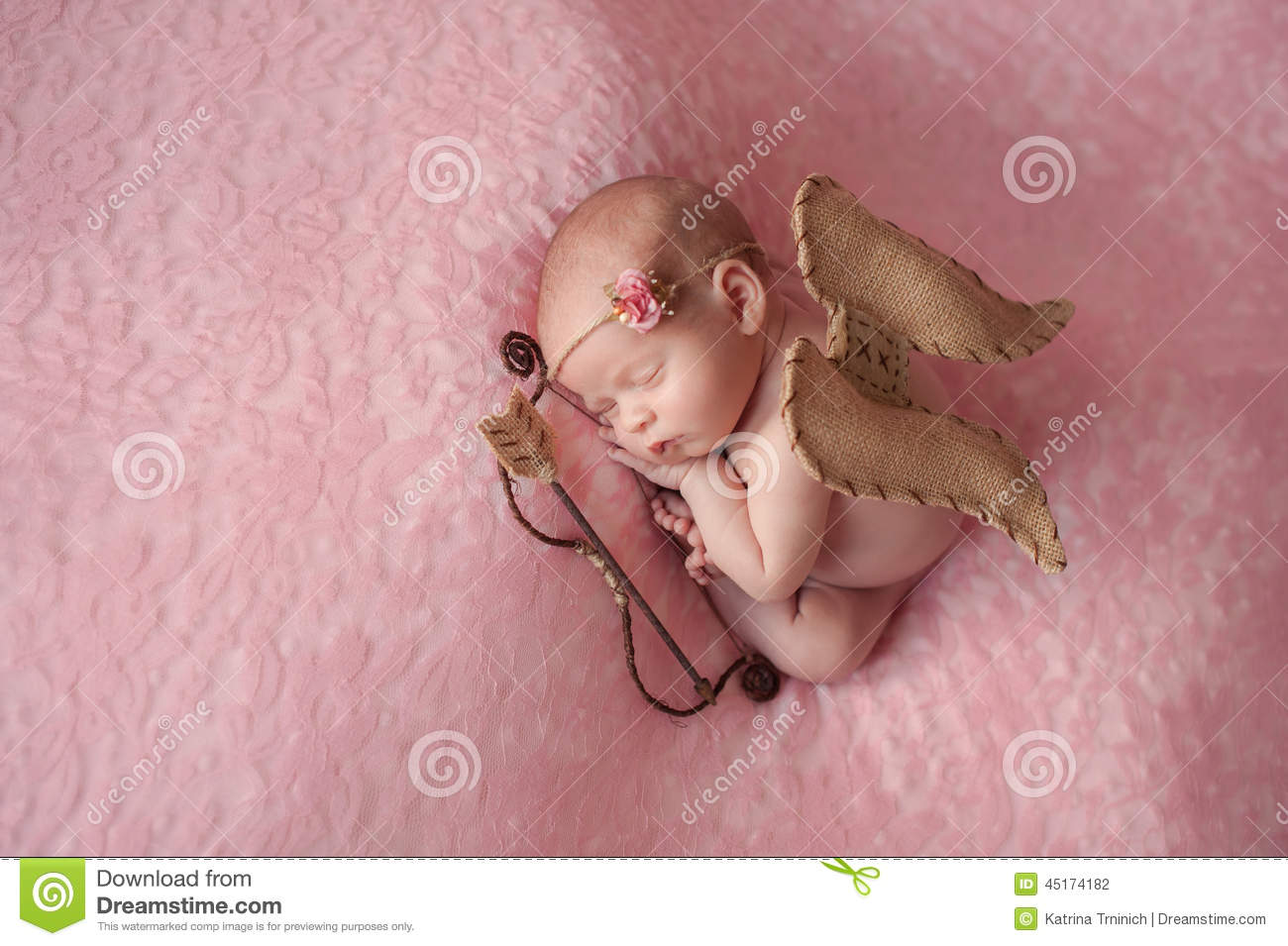 Newborn Baby Girl Wearing Cupid Wings Stock Photo  Image. Website Design Software Open Source. Sierra Motors San Antonio Carpet Charlotte Nc. Travel Sales Consultant Best Moving Van Lines. Monte Carlo Las Vegas Airport Shuttle. Executive Suites Minneapolis. Online Health Science Degree. Mattress Sealy Posturepedic Reviews. Training For Sales Managers Best Travel Visa