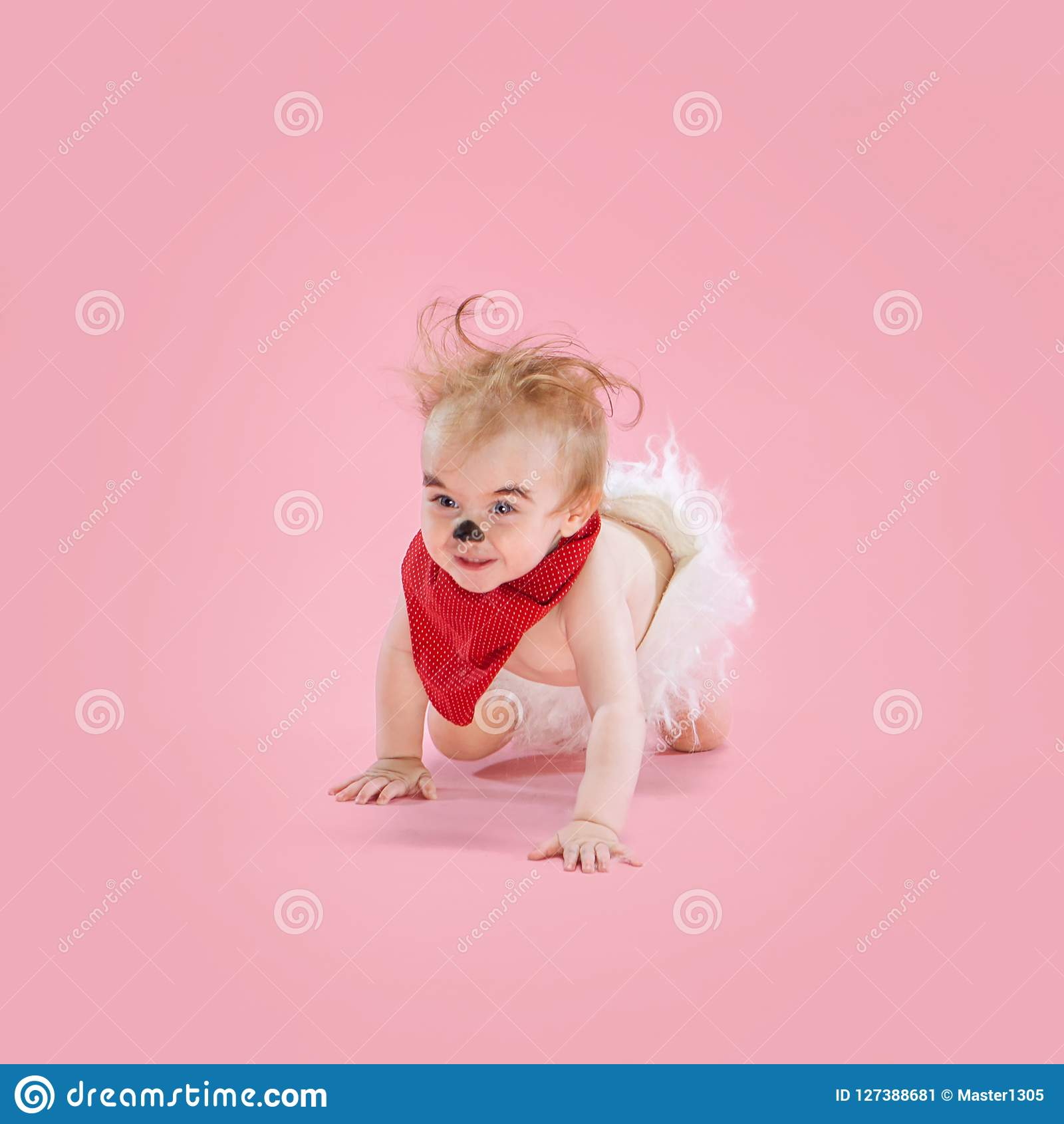 newborn baby girl wearing a halloween costume stock image - image of