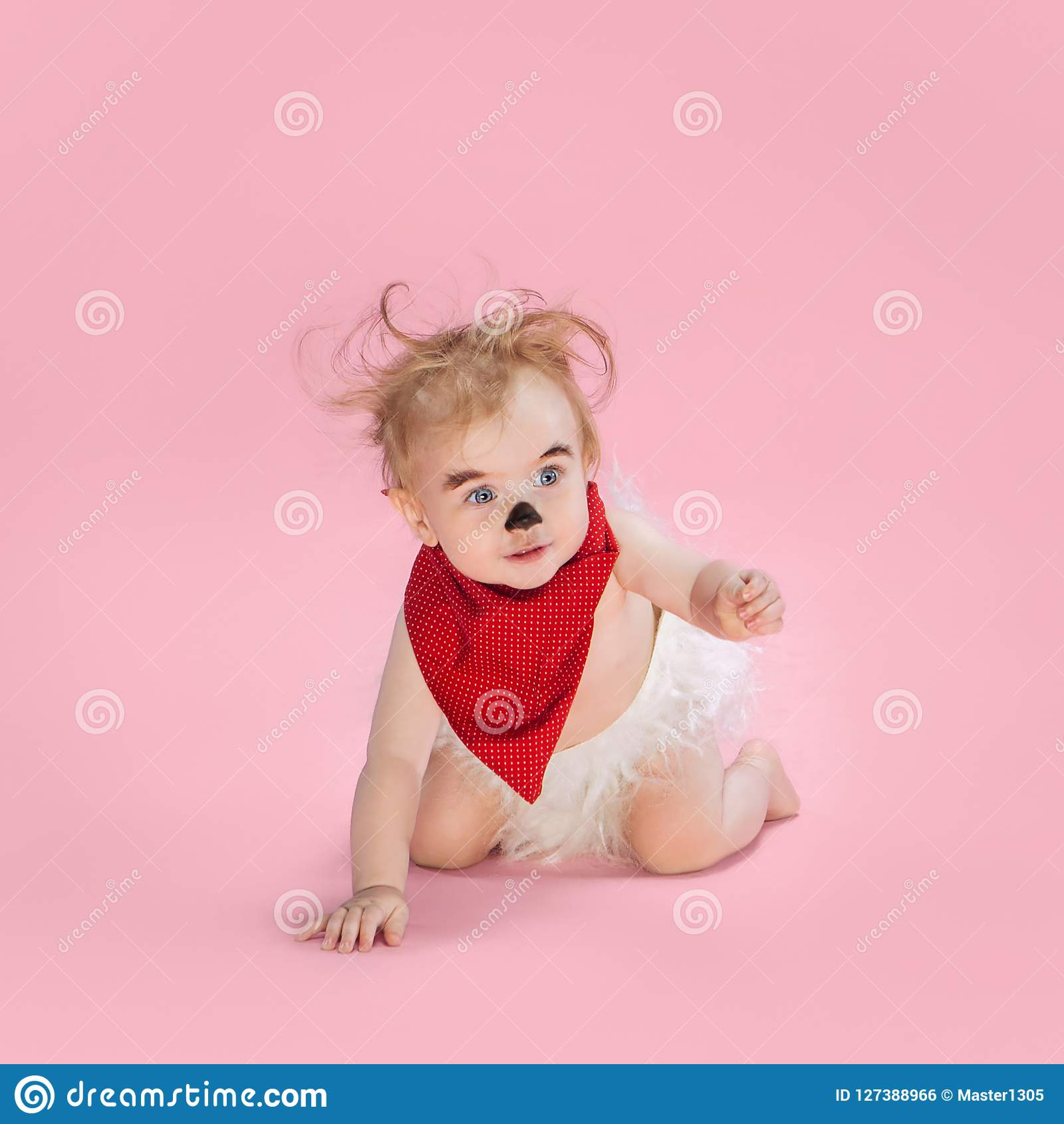newborn baby girl wearing a halloween costume stock photo - image of