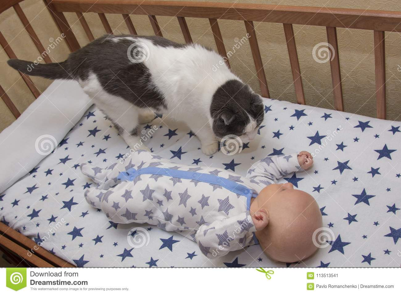 A Newborn Baby Lies In A Crib With Cat Stock Image Image Of Learn