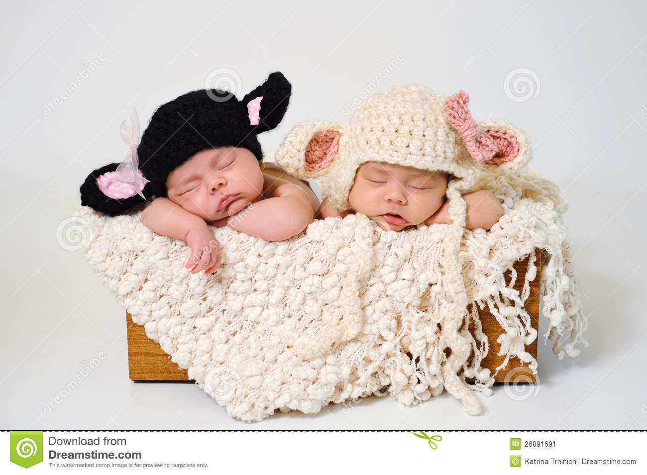 Sleeping fraternal twin newborn baby girls wearing crocheted black lamb and white lamb hats
