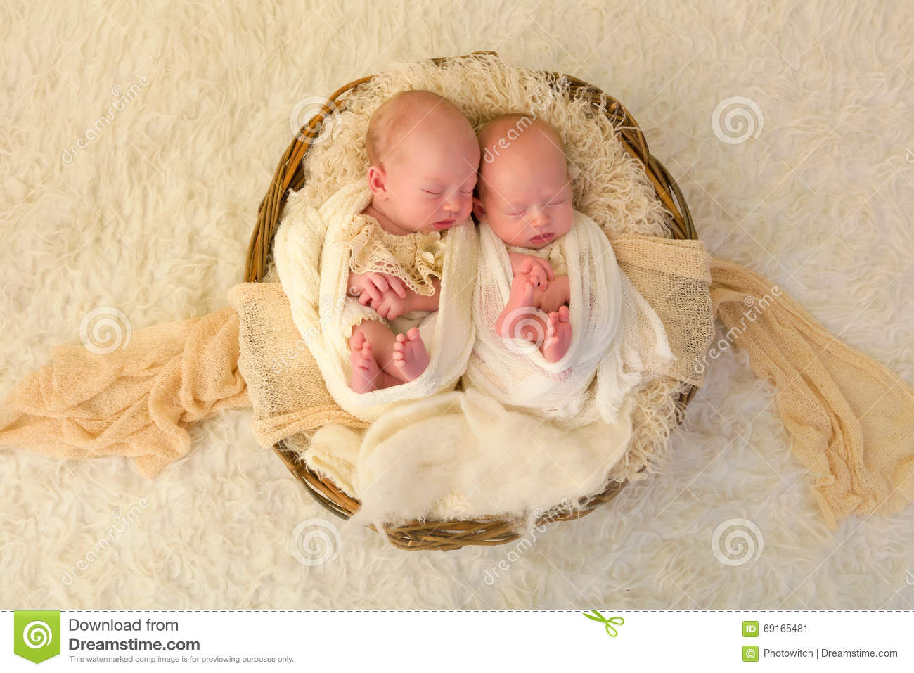 Newborn twin babies stock image. Image of posed, lying ...