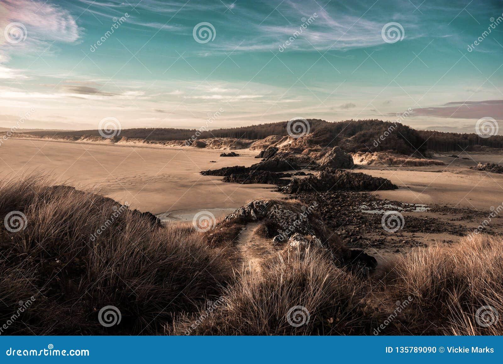 Newborough-Wald u. die Küste von Anglesey