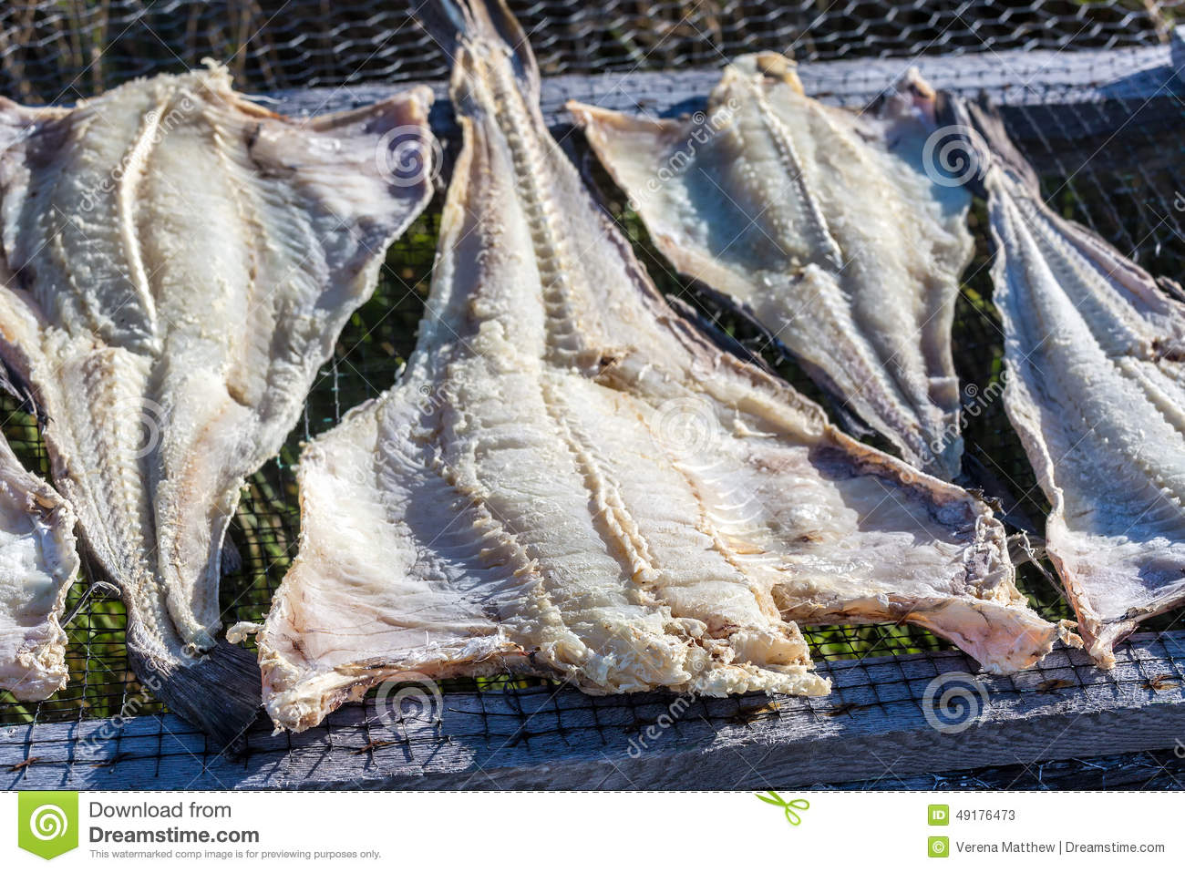 Newfoundland cod stock image image of tradional drying for Salted cod fish near me