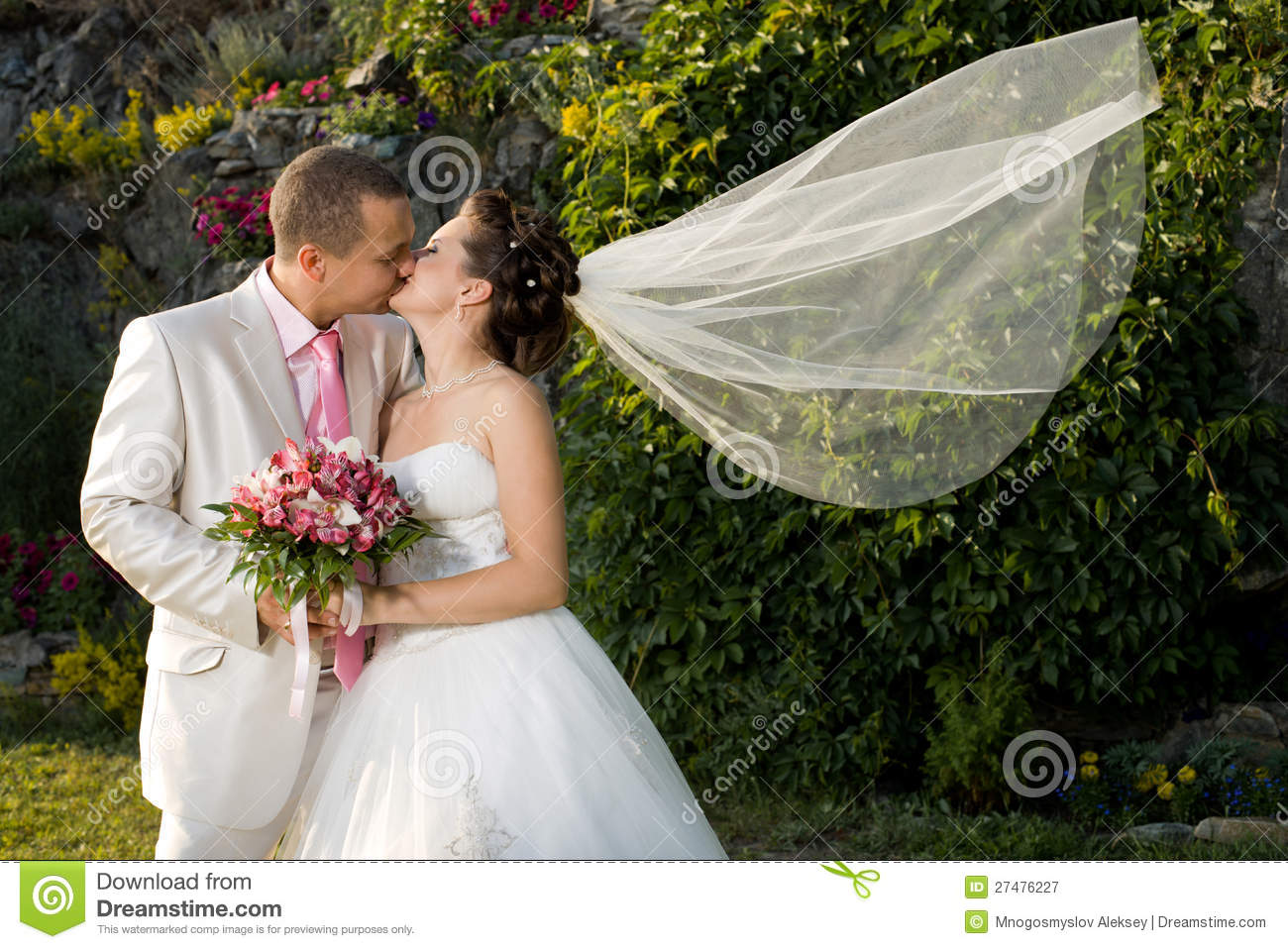 Newly married couple royalty free stock photography image 27476227