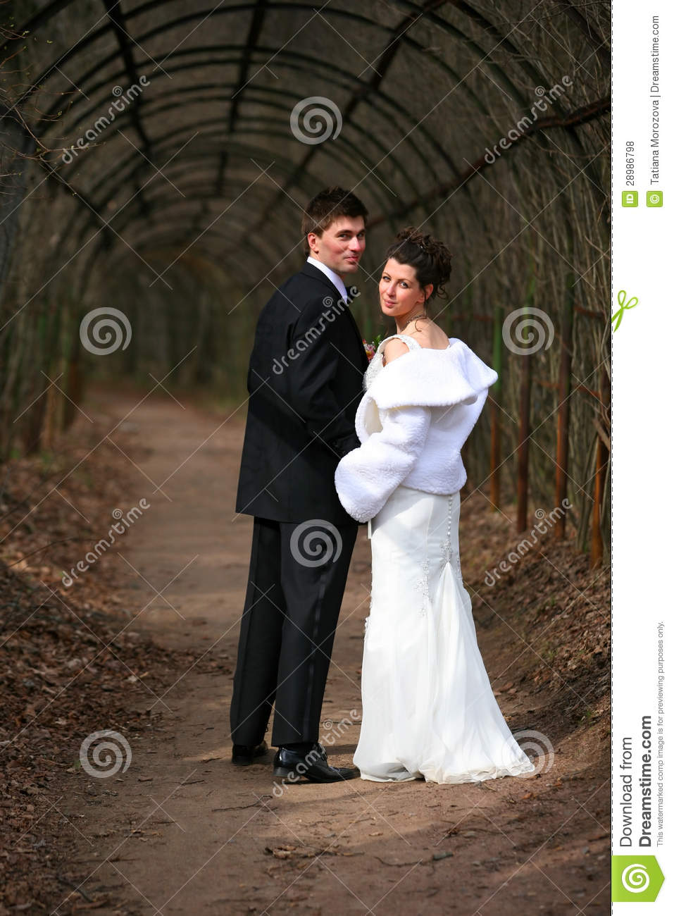 Newly married couple royalty free stock photos image 28986798