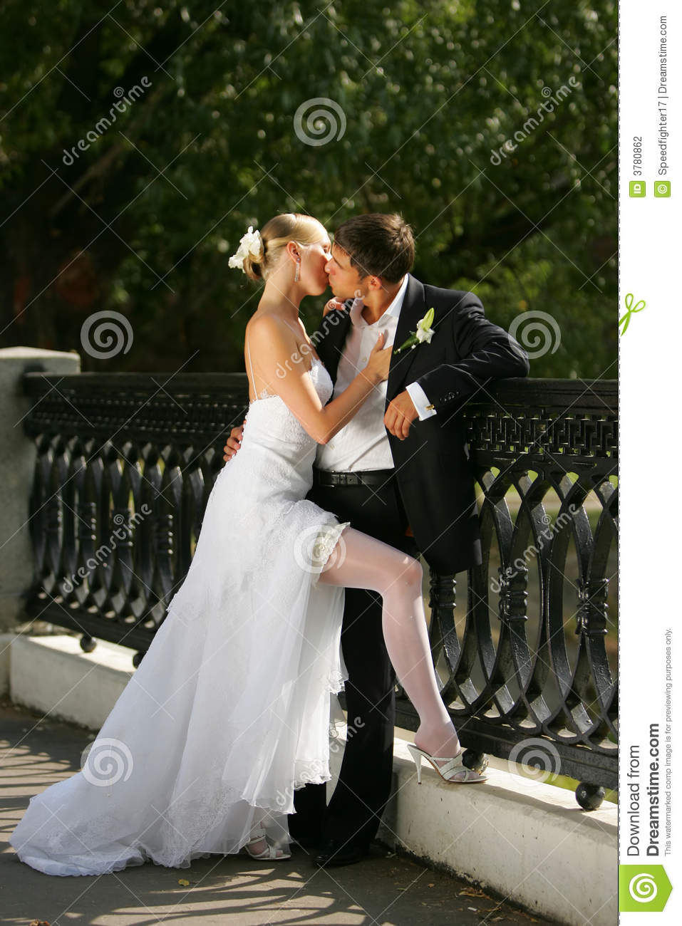 Newly married couple kissing stock photography image 3780862