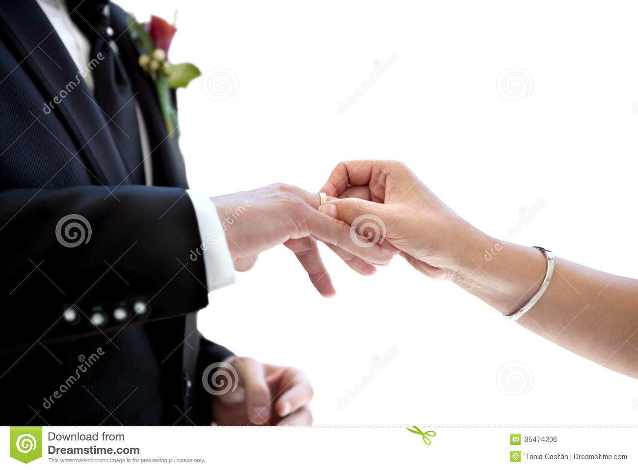 Newly Married Couple Putting Wedding Ring On The Finger Royalty Free Stock  Image