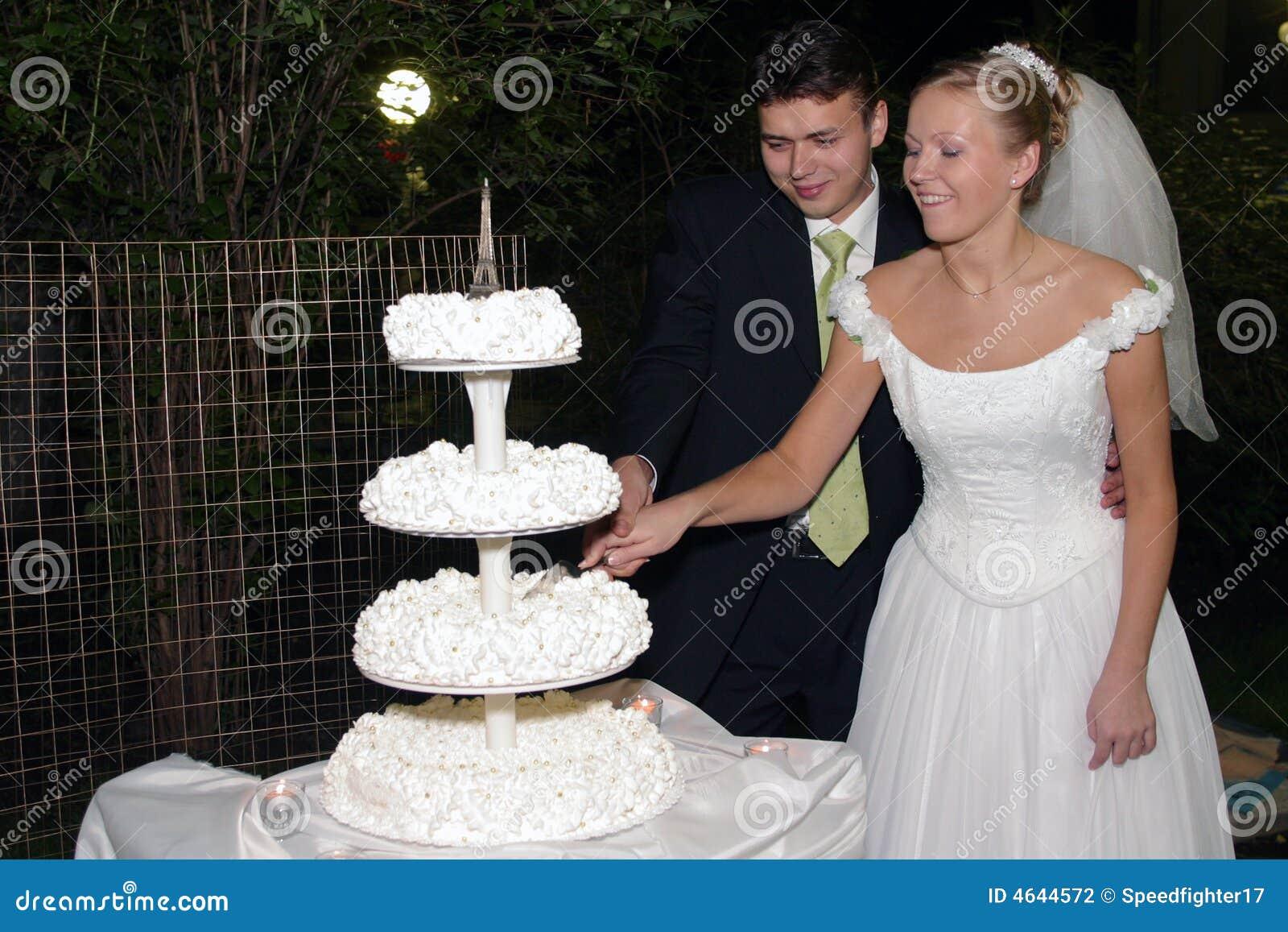 Newlywed Couple Cutting Cake Stock Photography Image