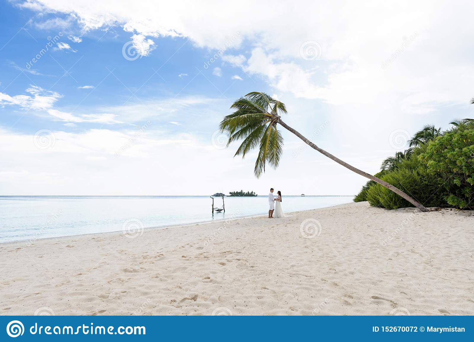 Newlyweds hug under a palm tree on a gorgeous beach with white sand and turquoise water