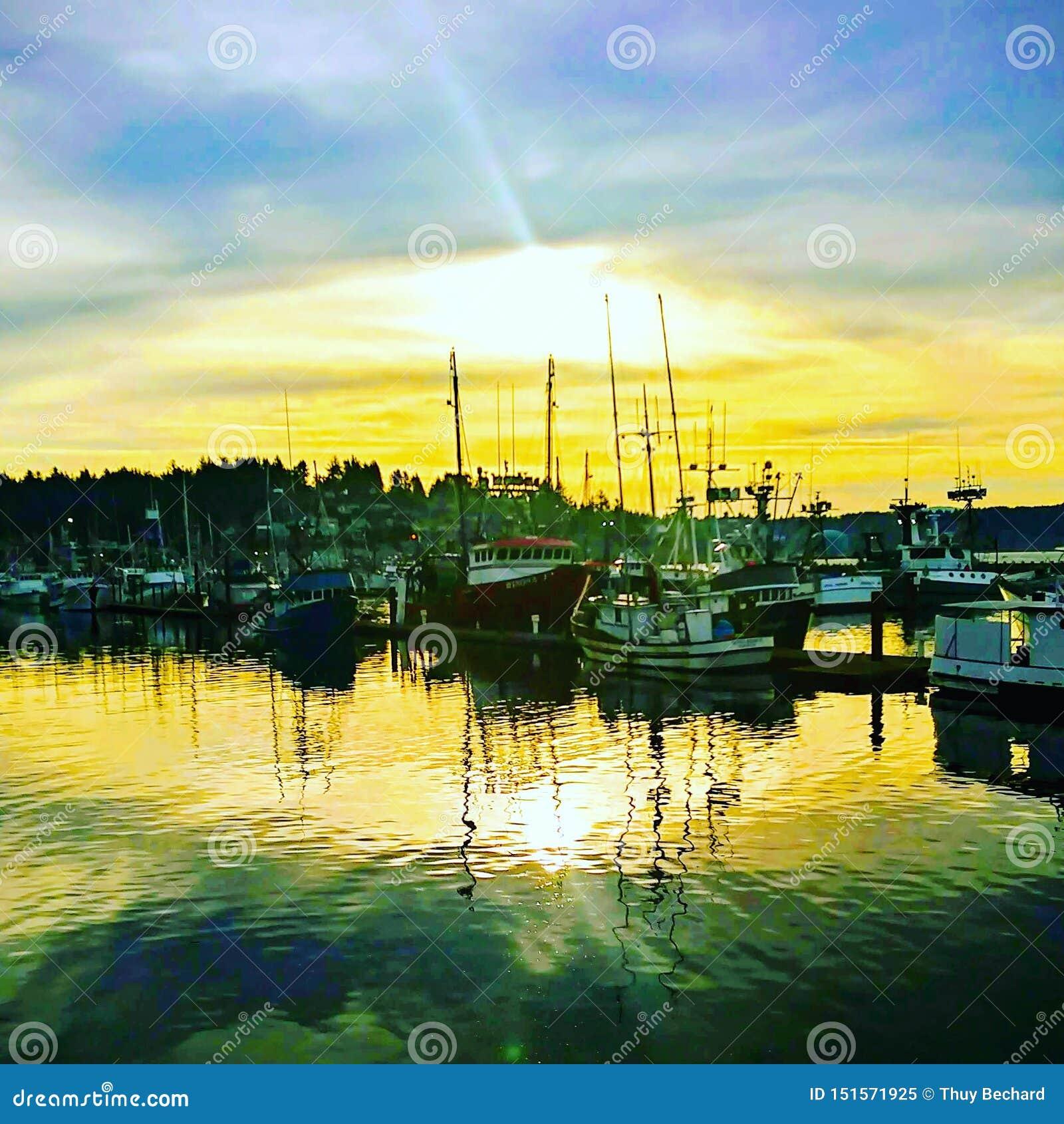 Newport-Bucht-Sonnenaufgang