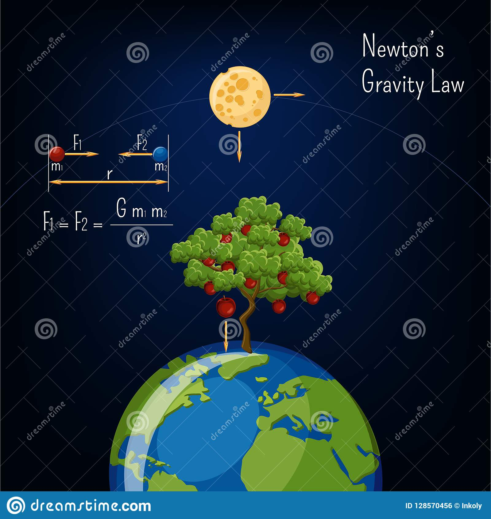 Newton`s Gravity Law Infographic With Earth Globe, Moon, Apple Tree