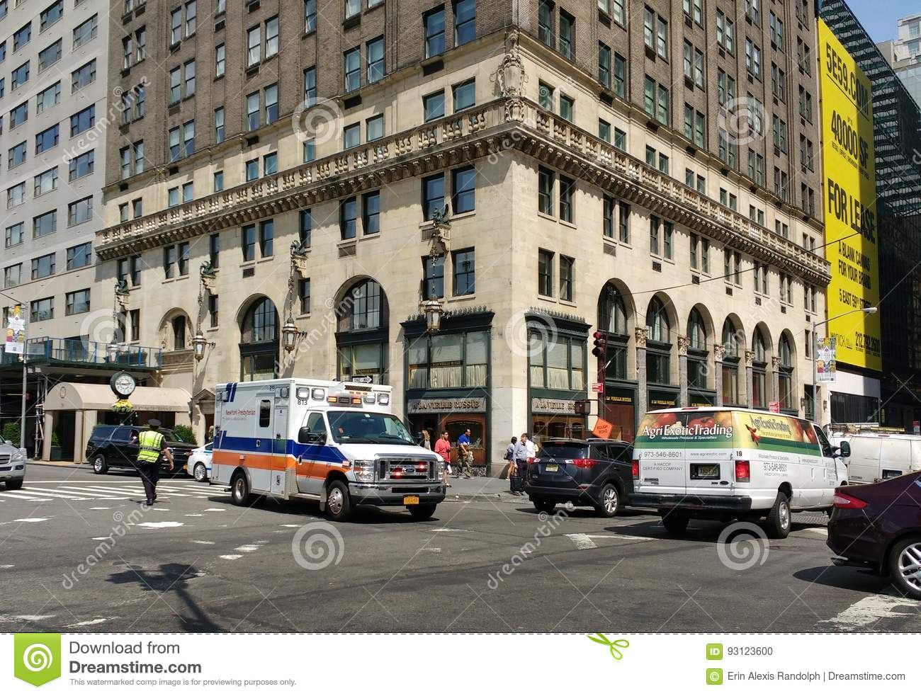 NewYork–Presbyterian Hospital Ambulance, NYPD Traffic Officer, New