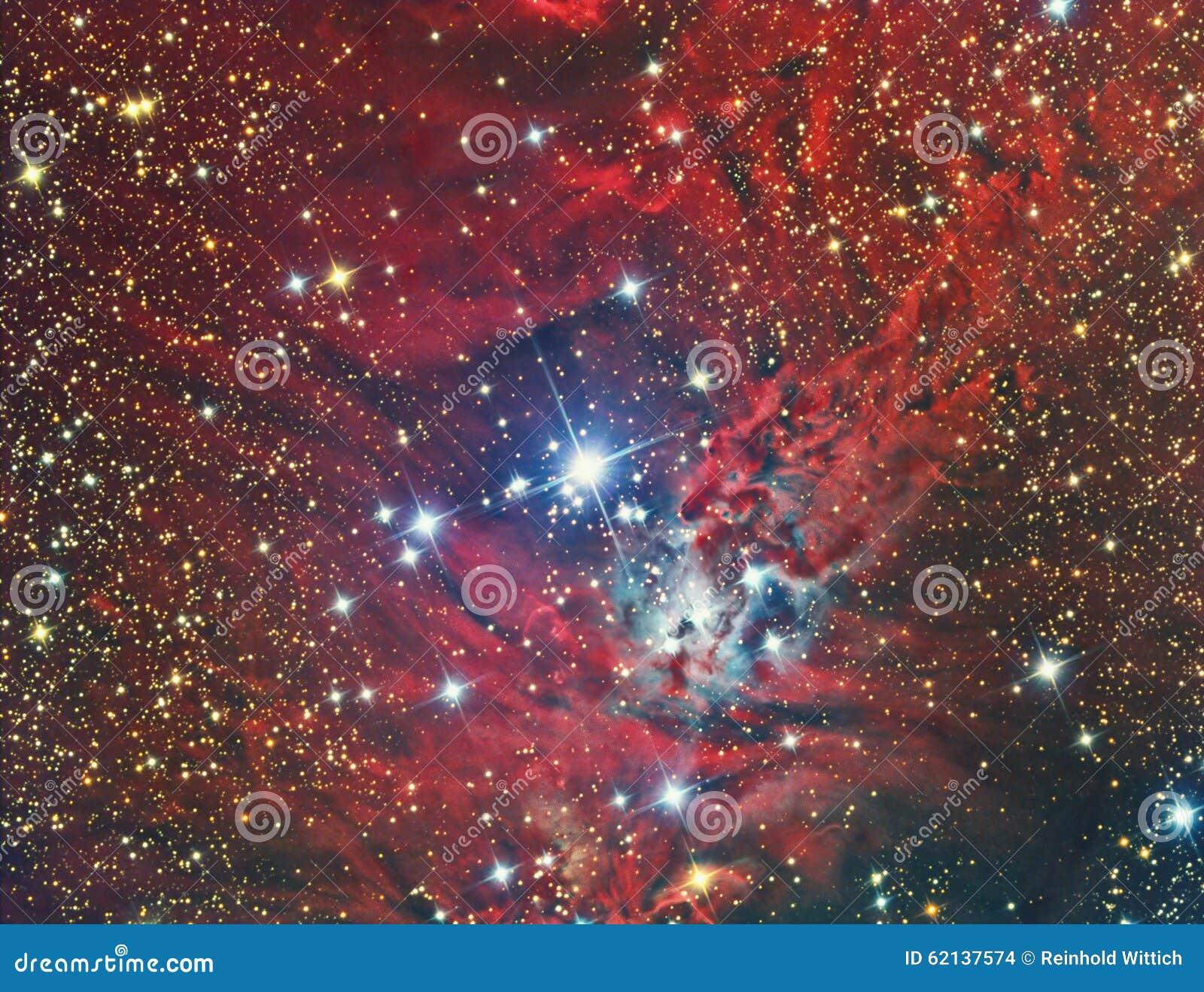 NGC 2264 Christmas Tree Cluster and Nebula