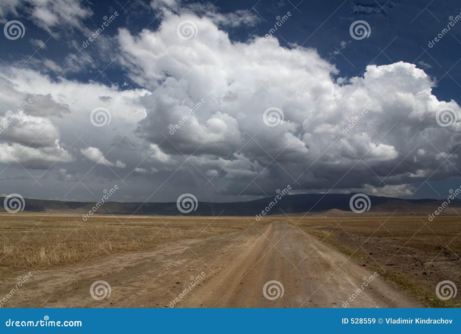 Ngorongoro del paisaje 038 de África