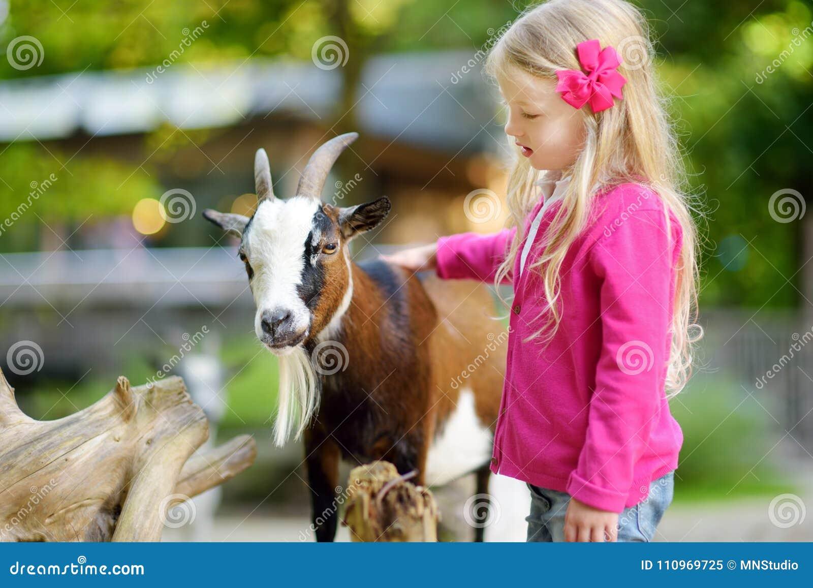 Niña linda que acaricia y que alimenta una cabra en el zoo-granja Niño que juega con un animal del campo en día de verano soleado